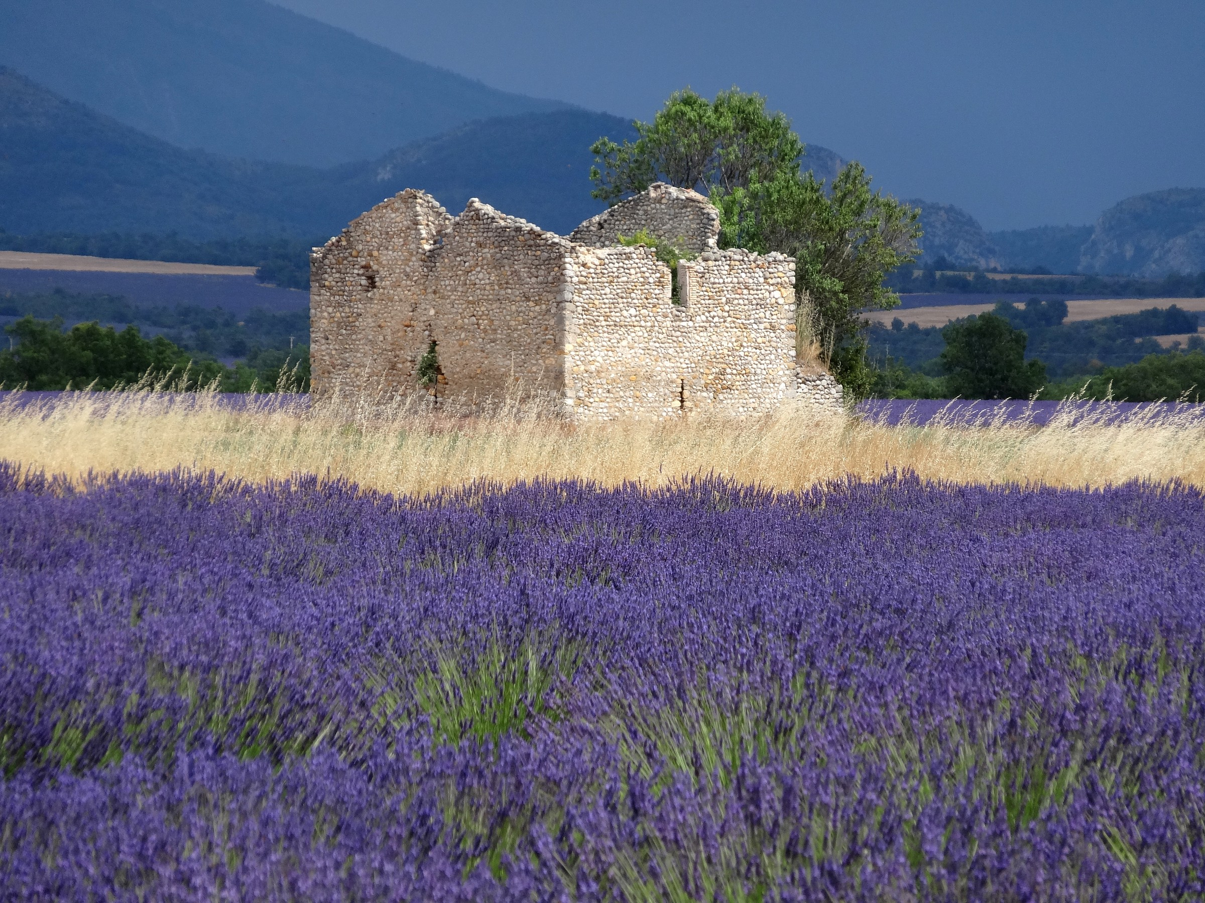 The colors of Provence...