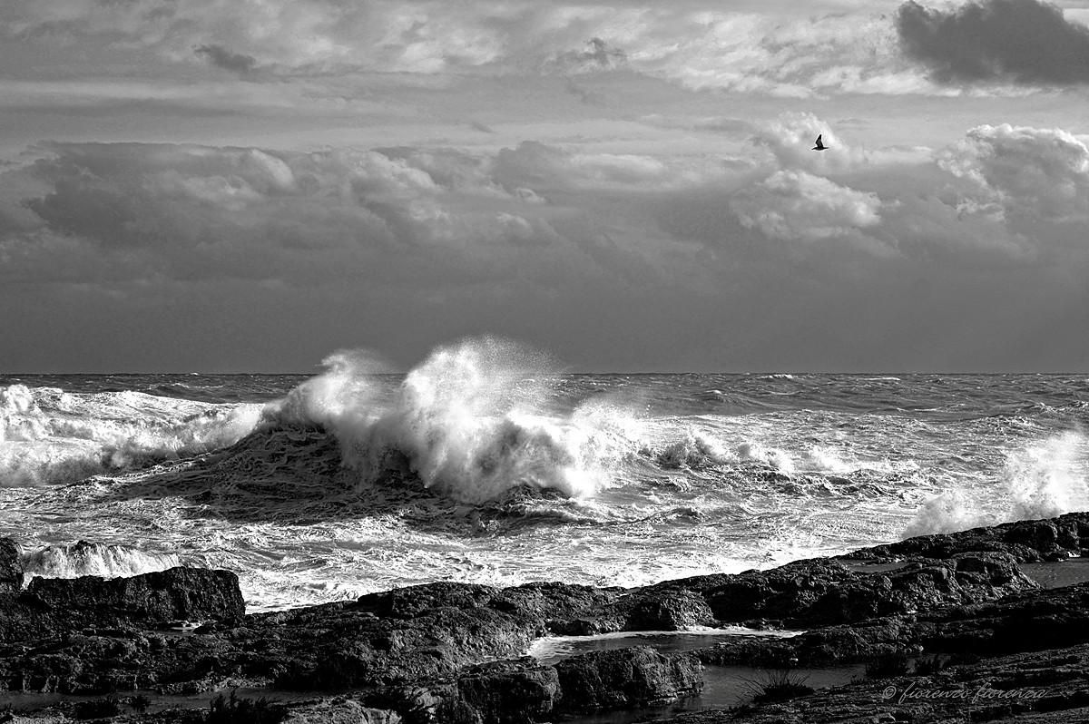 Tempesta...
