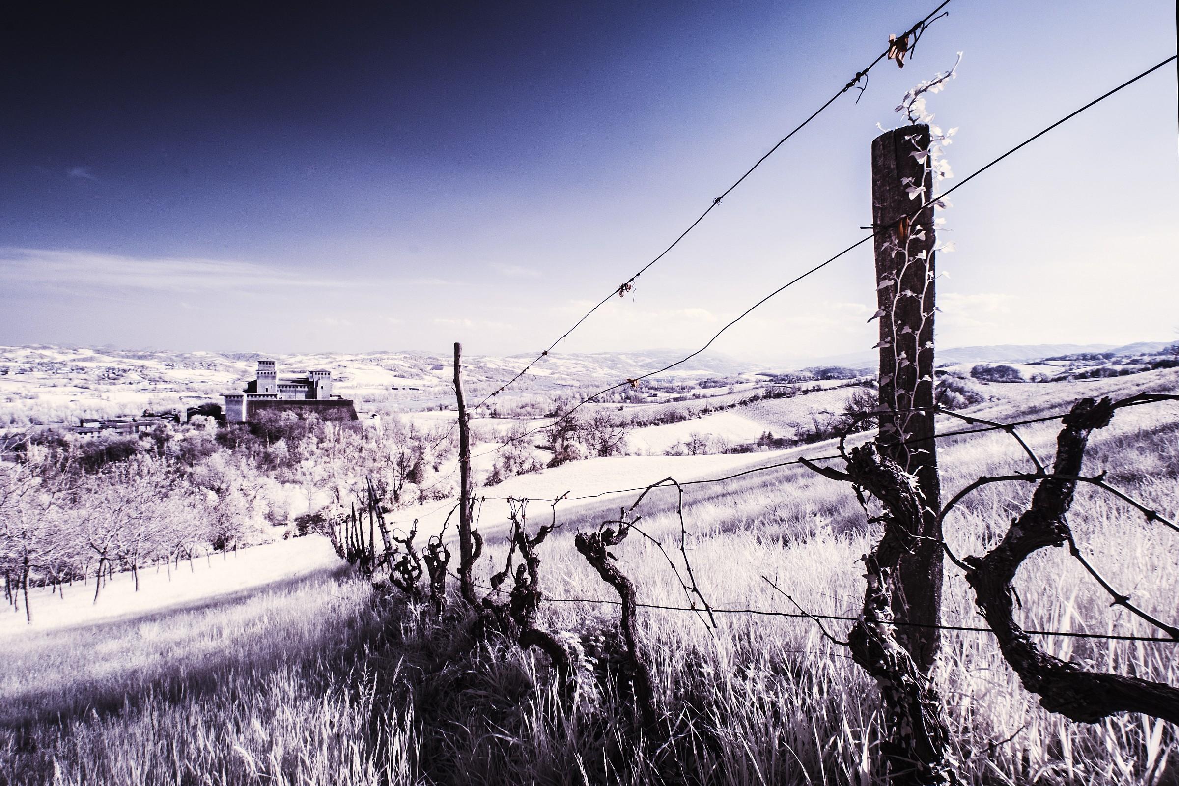 Castle Torrechiara IR...