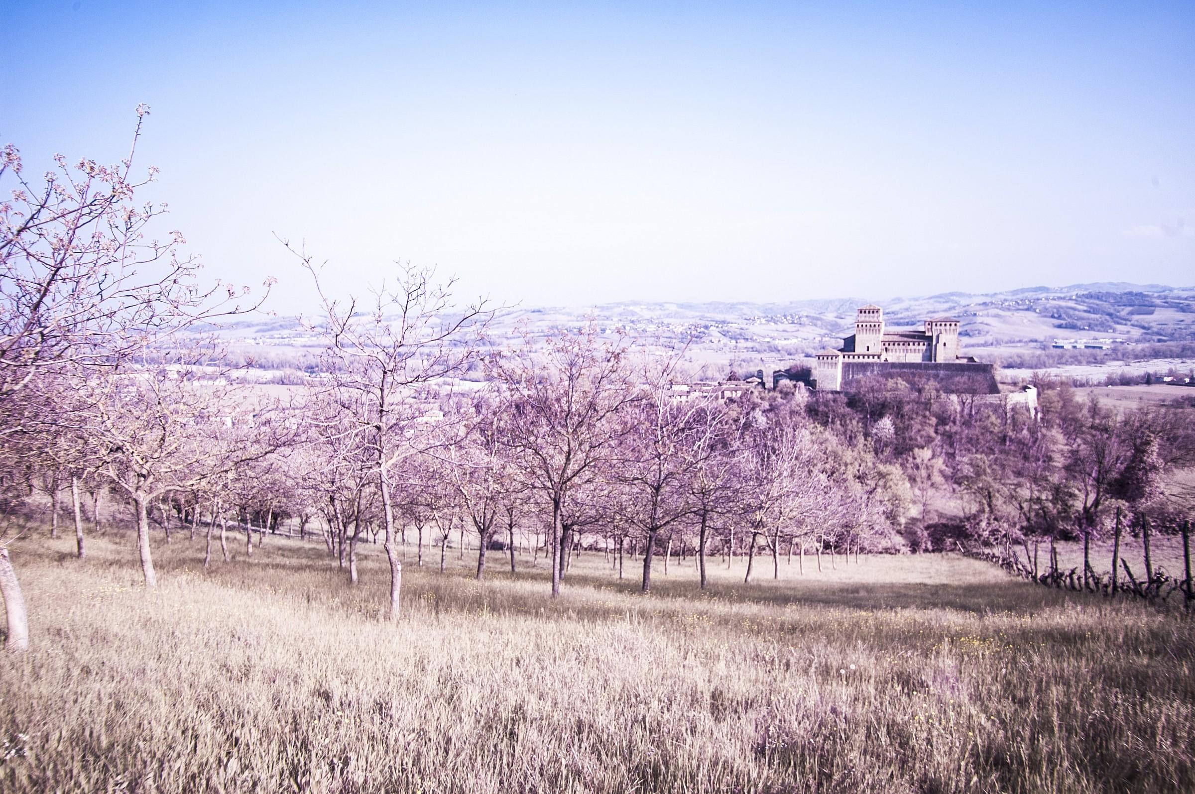 Castle Torrechiara IR 3...