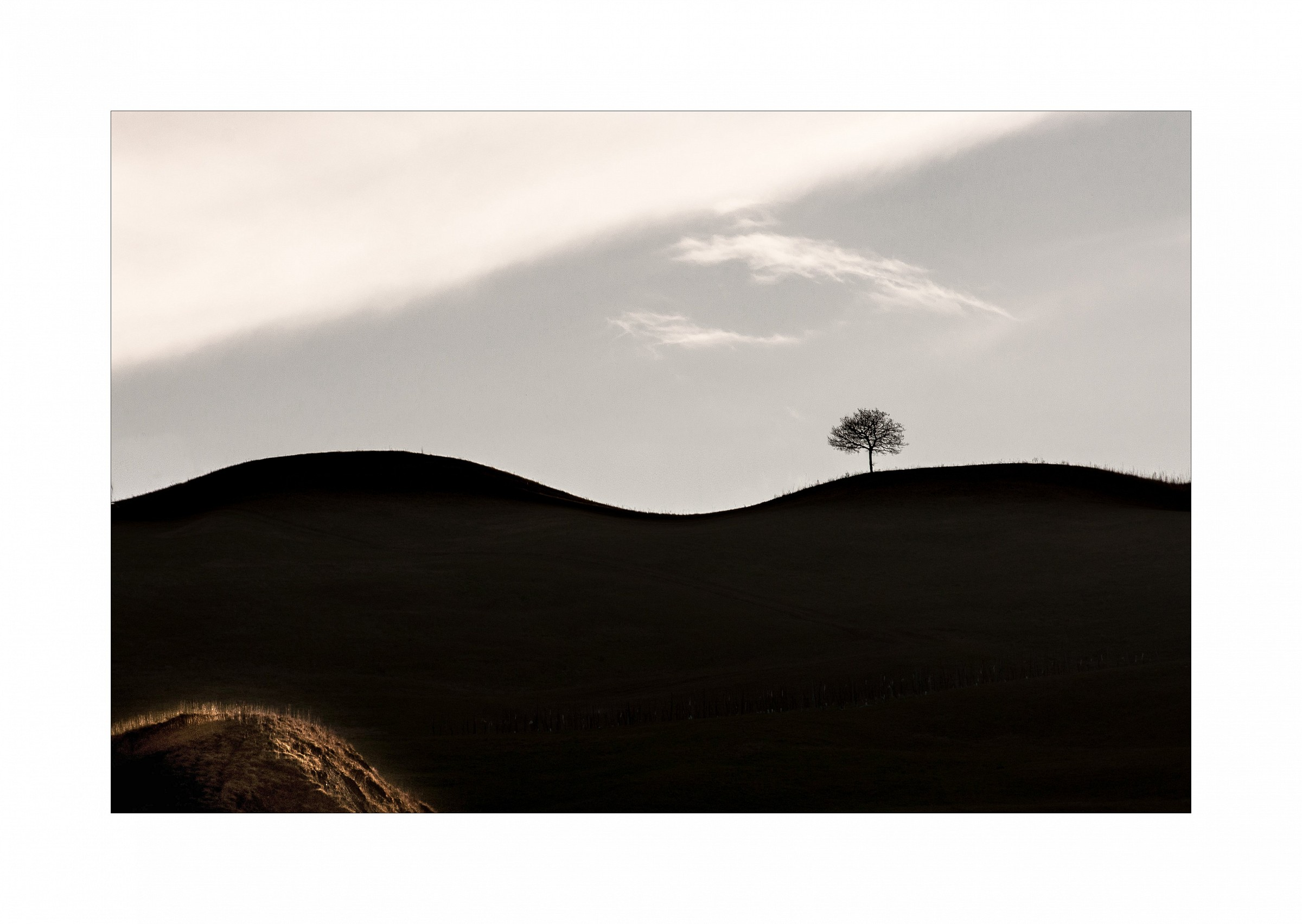The dunes of the Val Panaro...