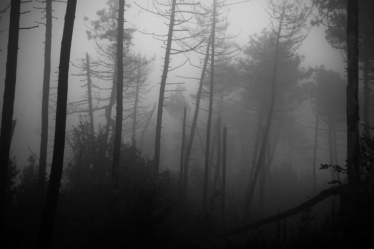 ... Abandonment ......