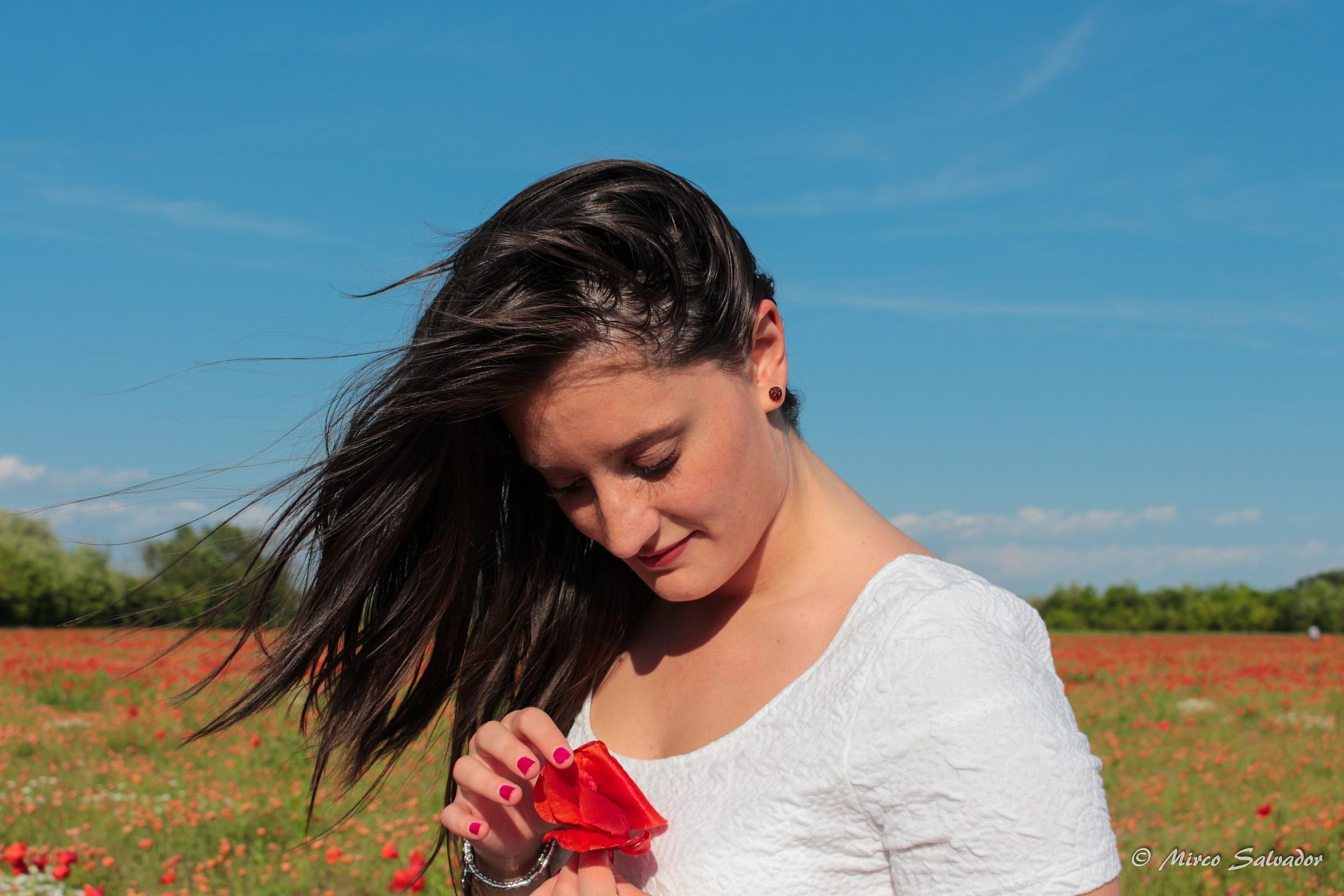 poppies 4...