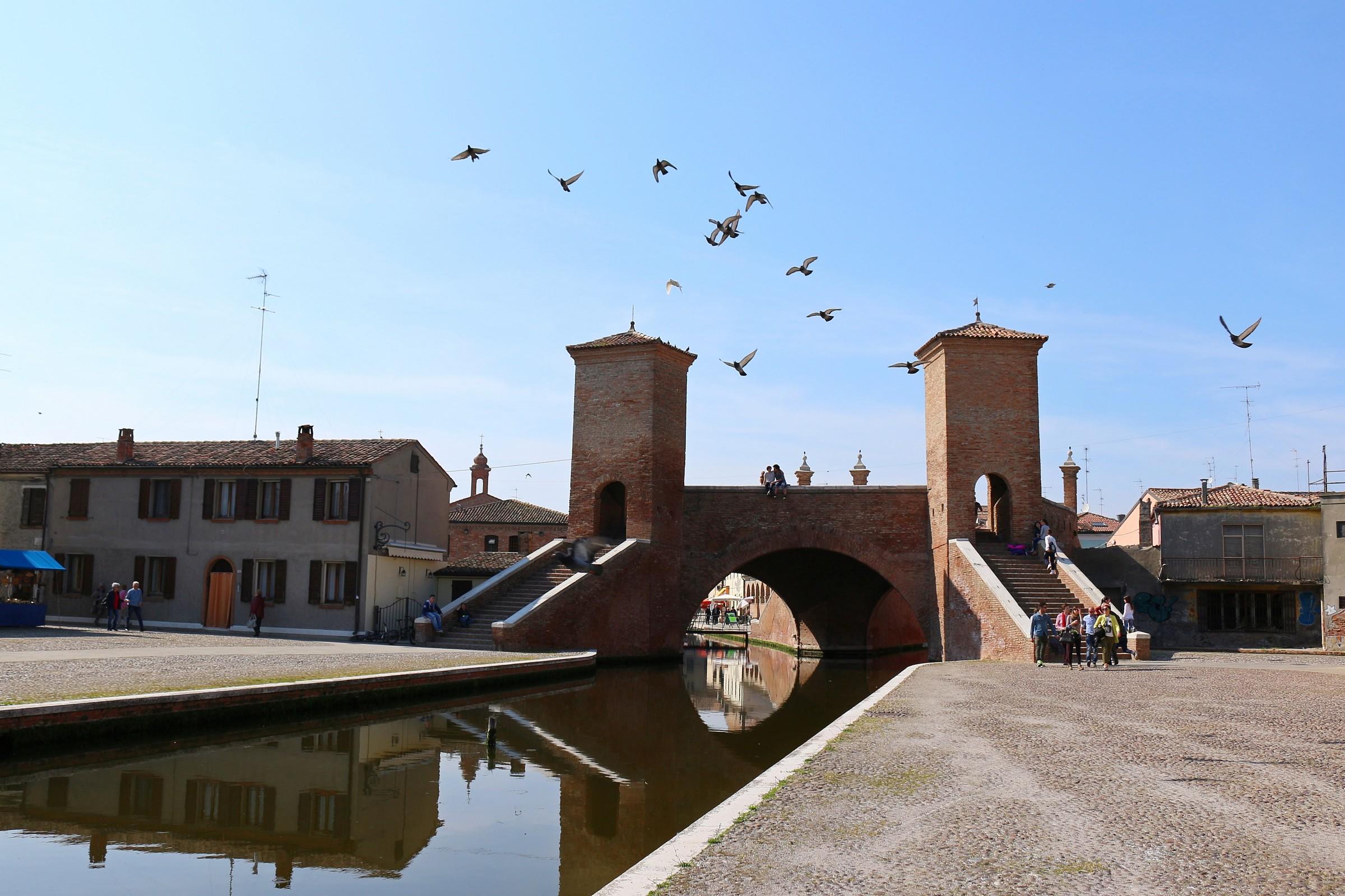 Trepponti & birds...