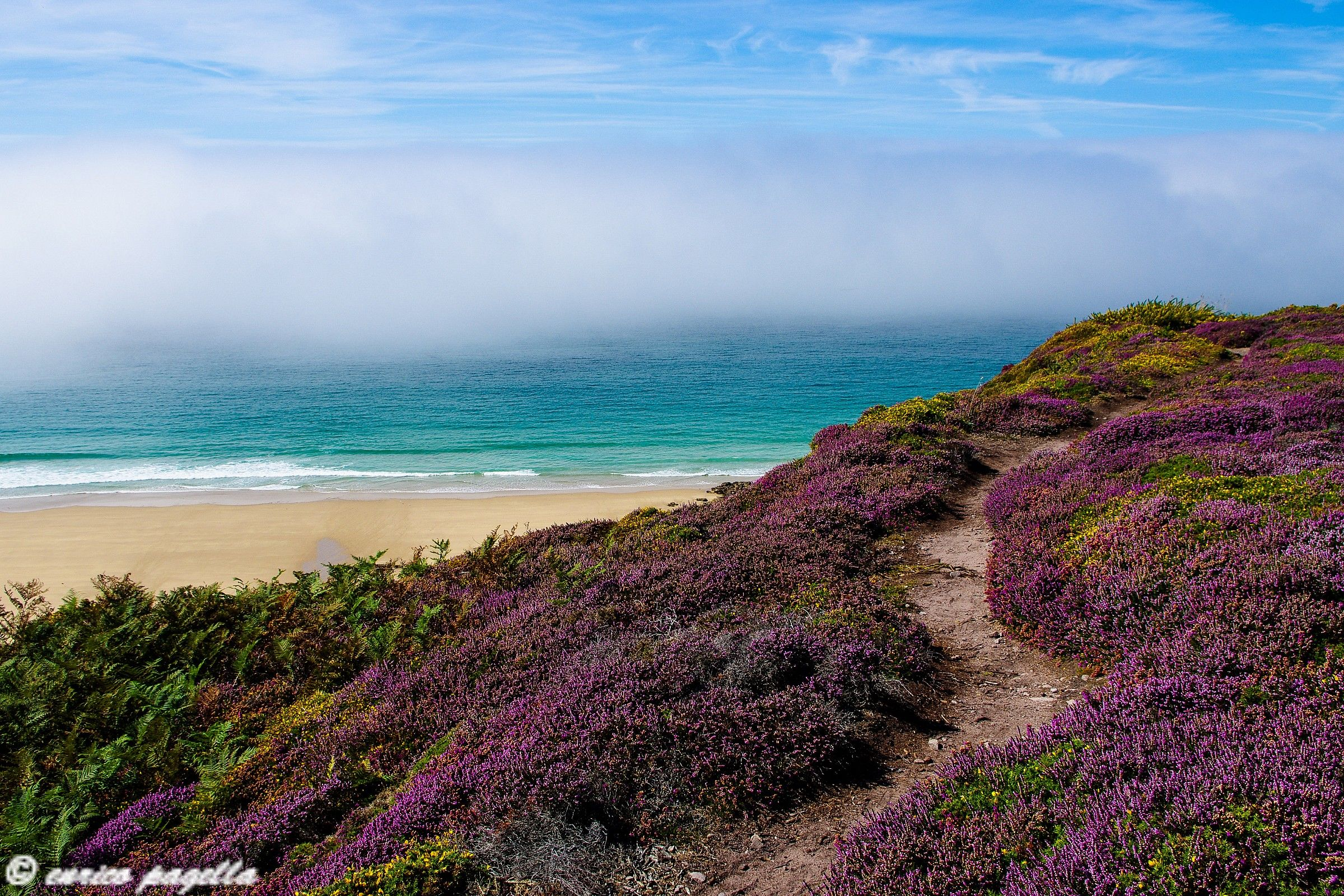 The spectacular colors of the Breton coast...