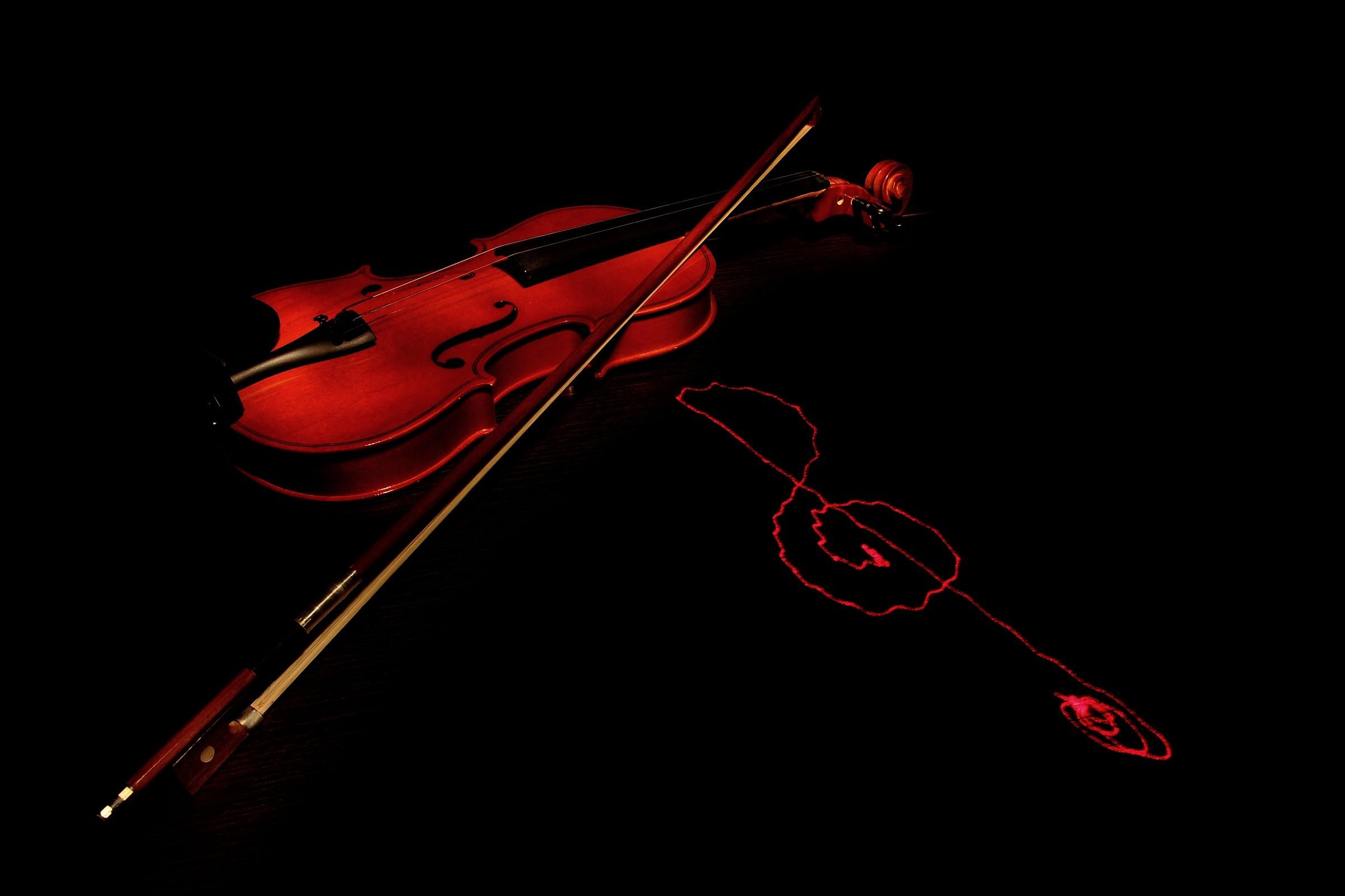 Violin Violin &...