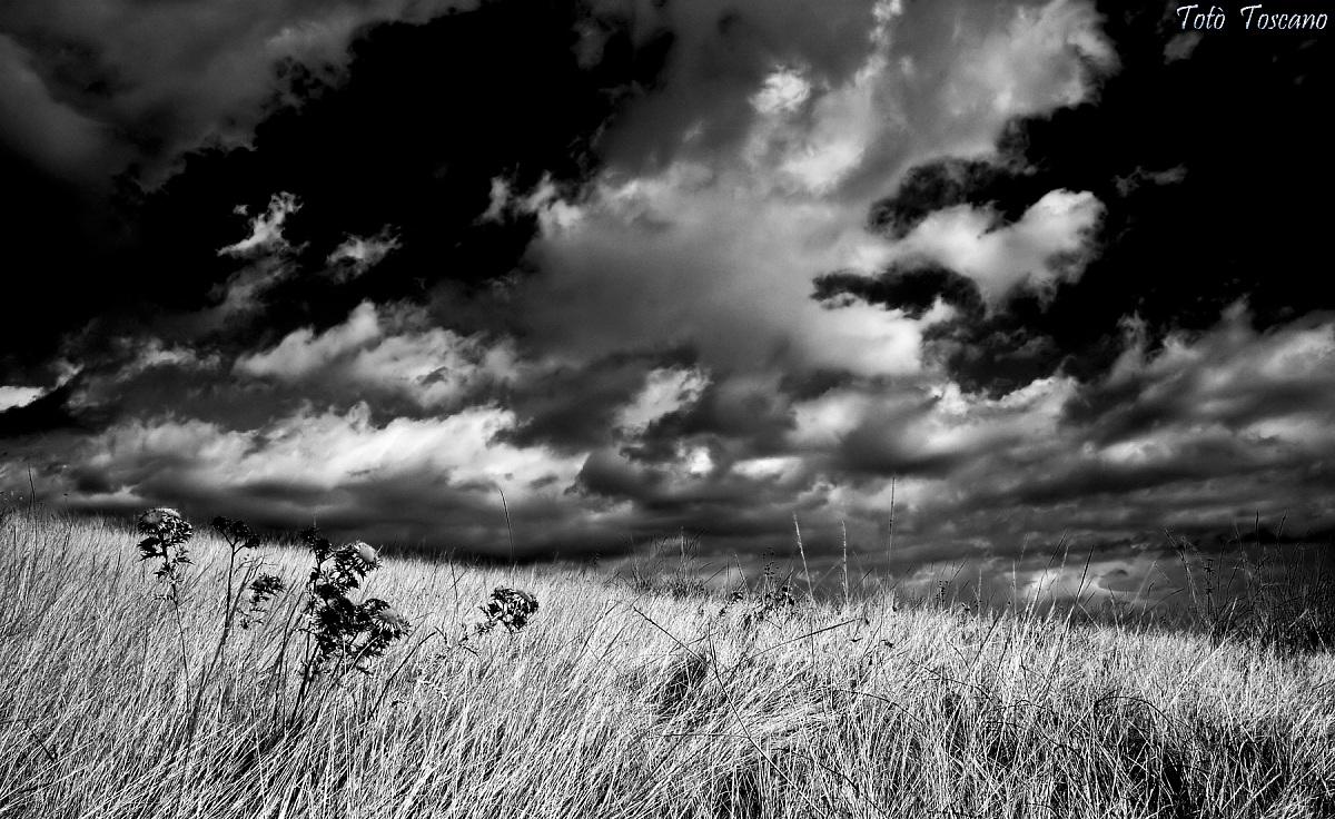 Paesaggi in bianco e nero by tot toscano juzaphoto for Disegni bianco e nero paesaggi