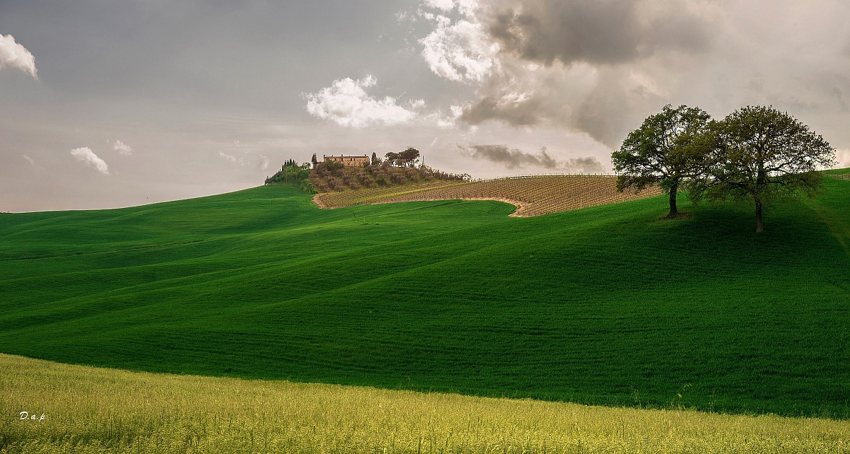 Colors of the Val d 'Orcia III...