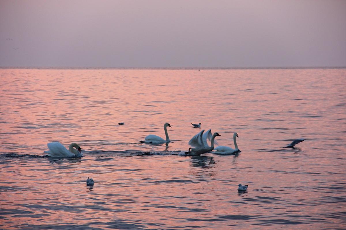 Lake Garda...