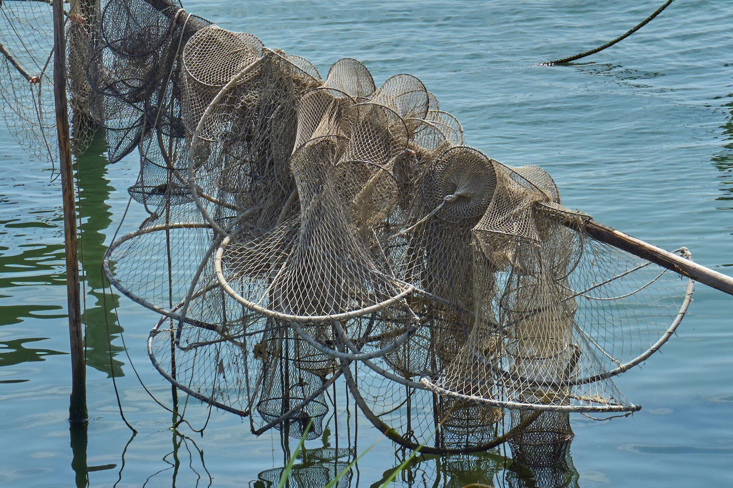Fishing nets...
