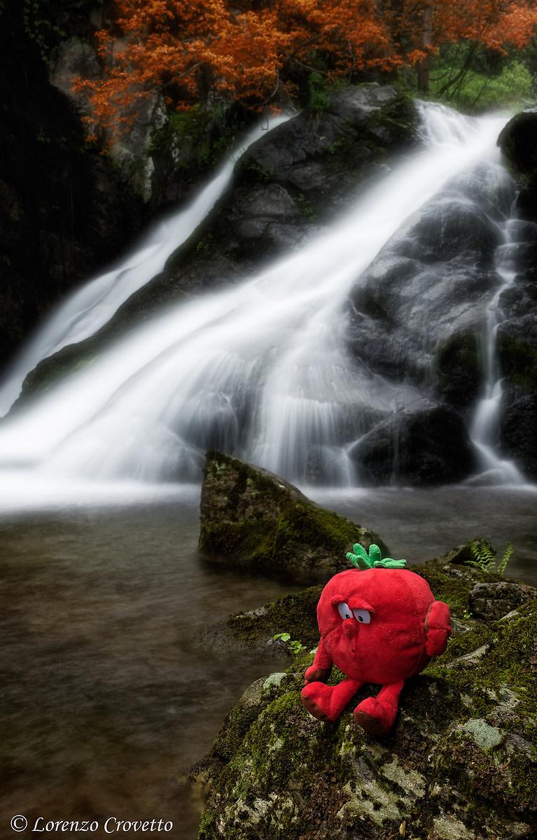 The Guardian of Waterfall...