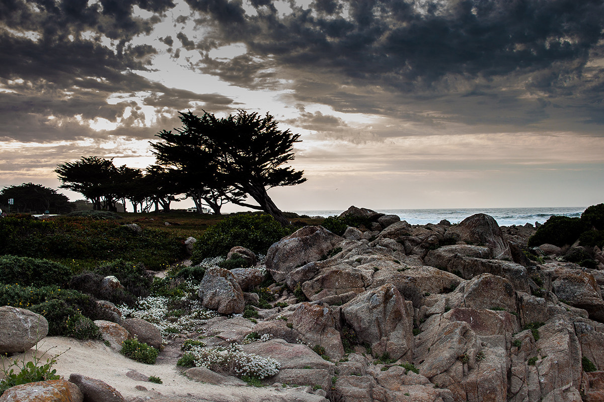Pacific Grove...