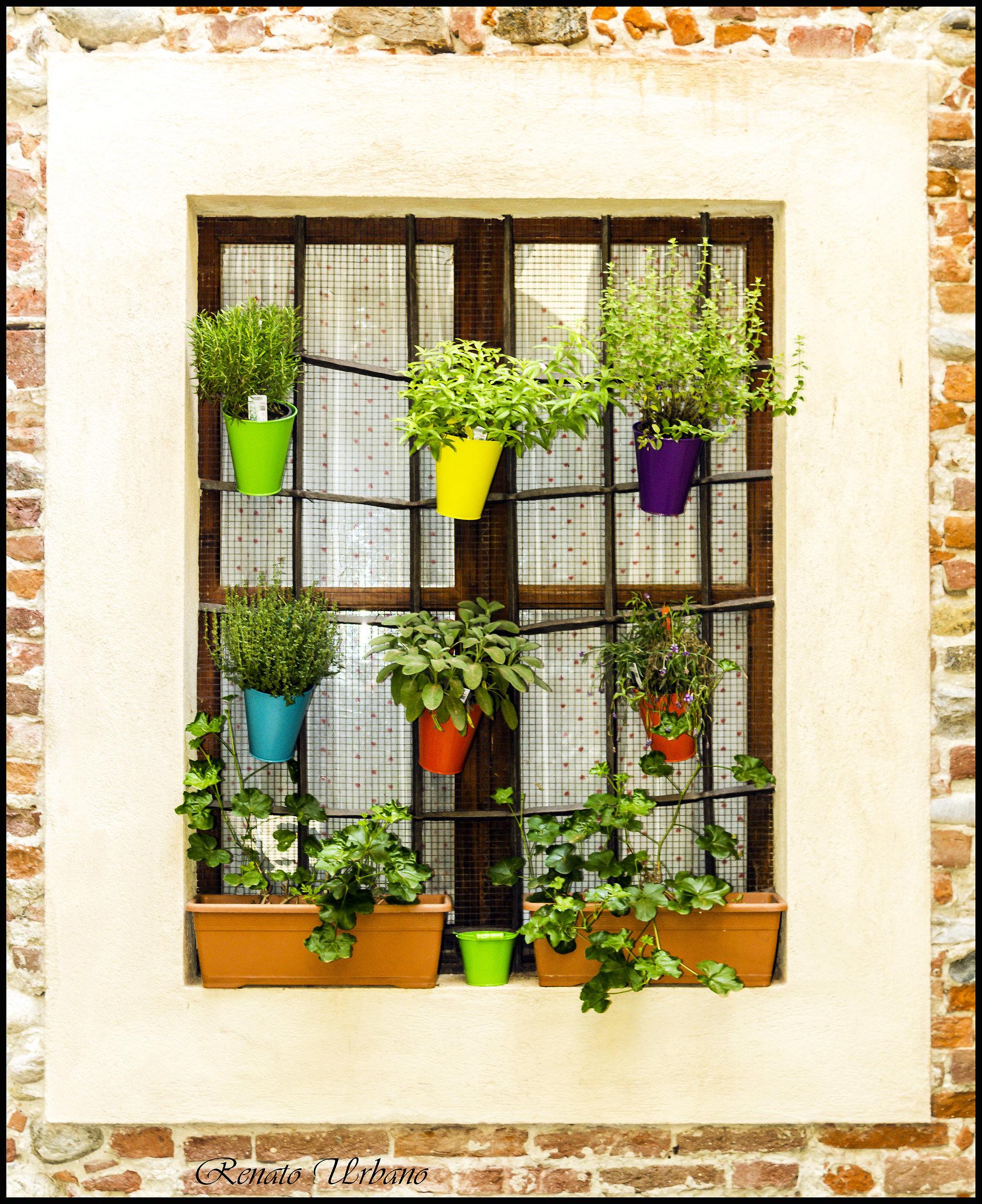 Una finestra per giardino juzaphoto - Portavasi da finestra ...