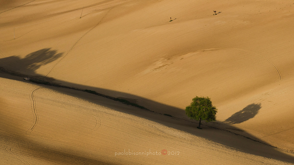 The Desert in the Countryside...
