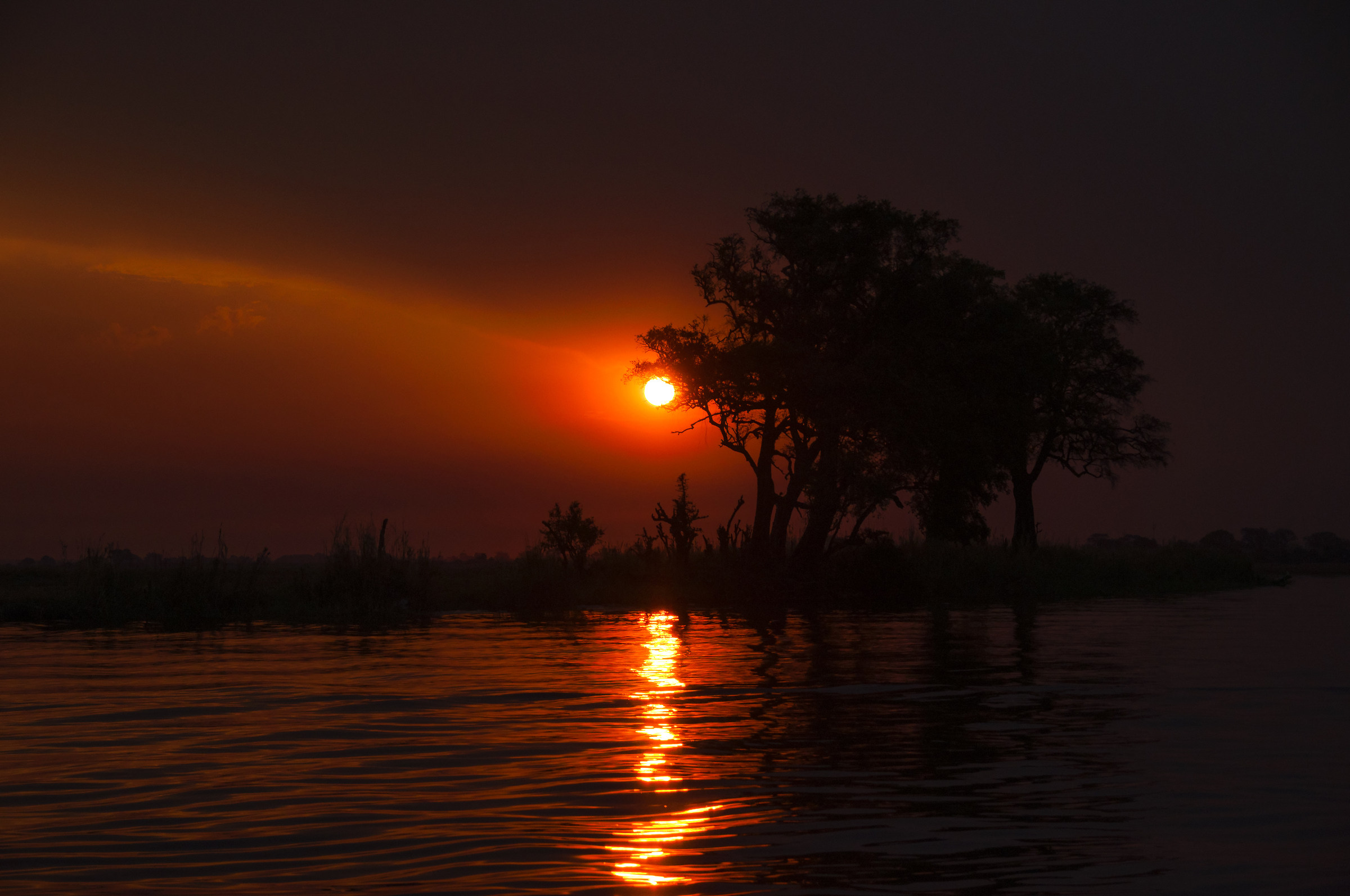 Sunset in Chobe River...