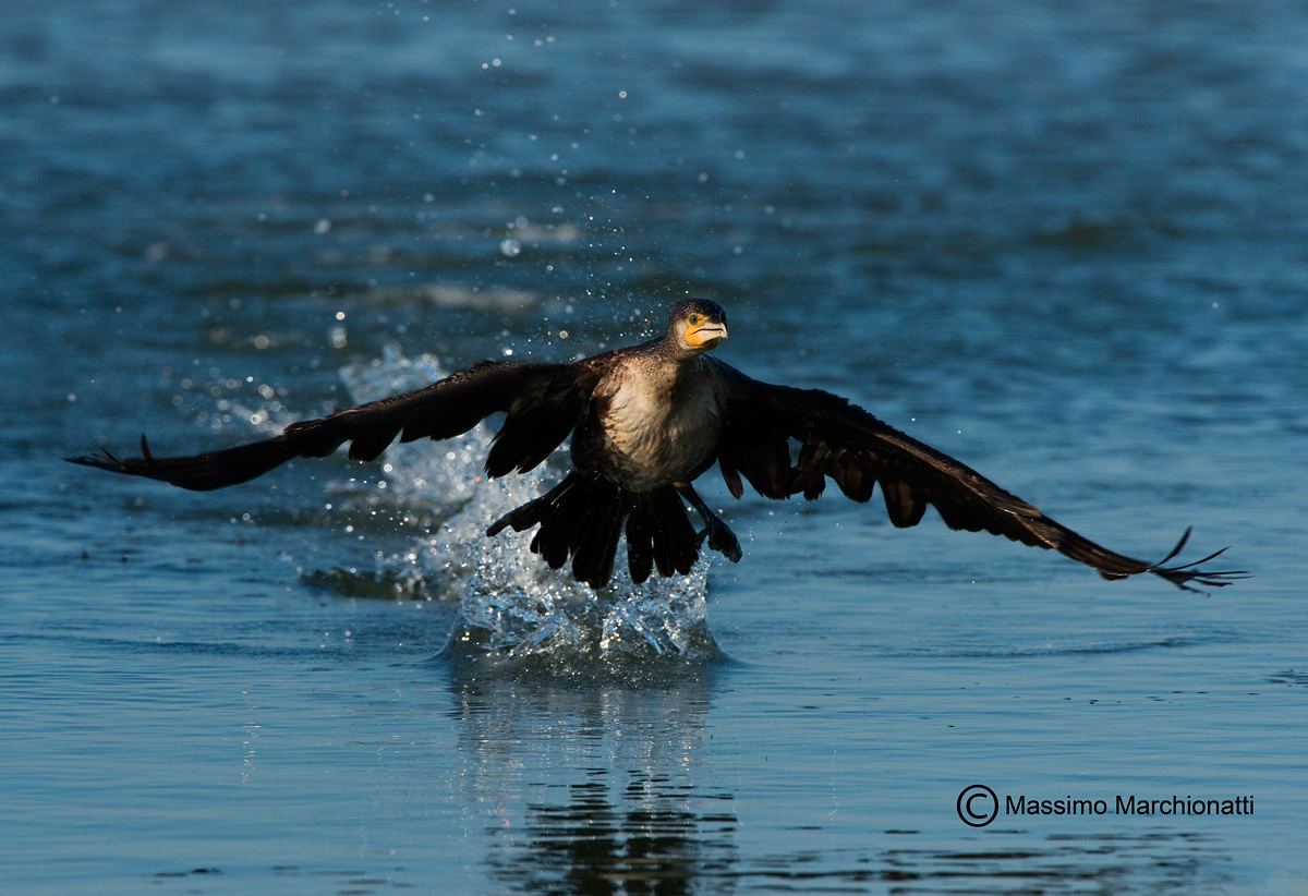 Take-off...