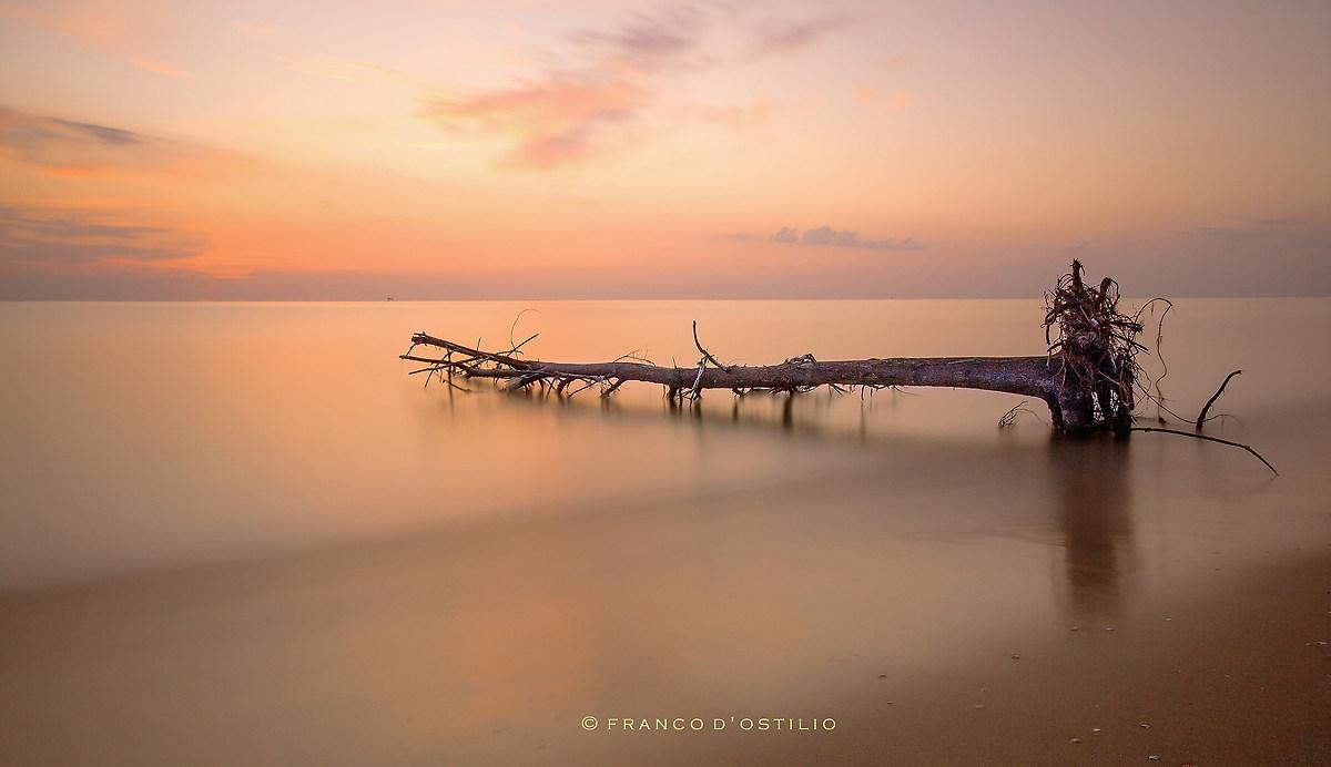 Magic moments of dawn ......