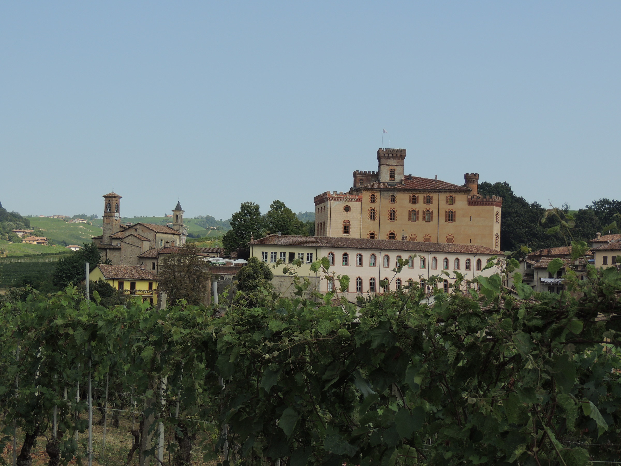 Castle seen from the vineyards of Barolo...
