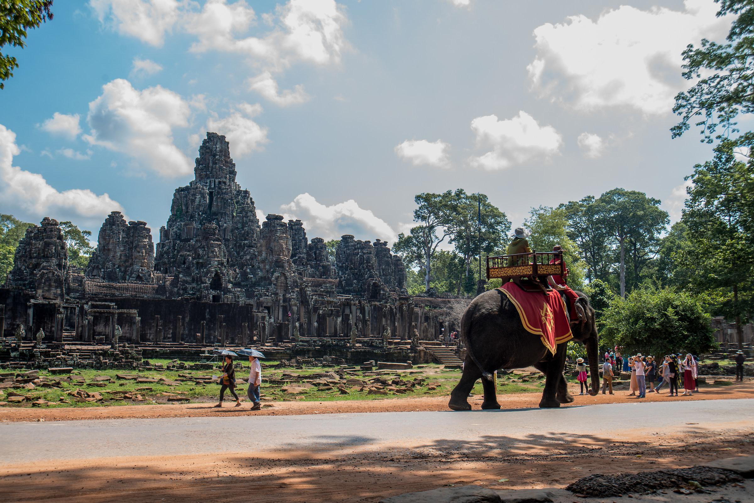 Elefante ad Angkor...