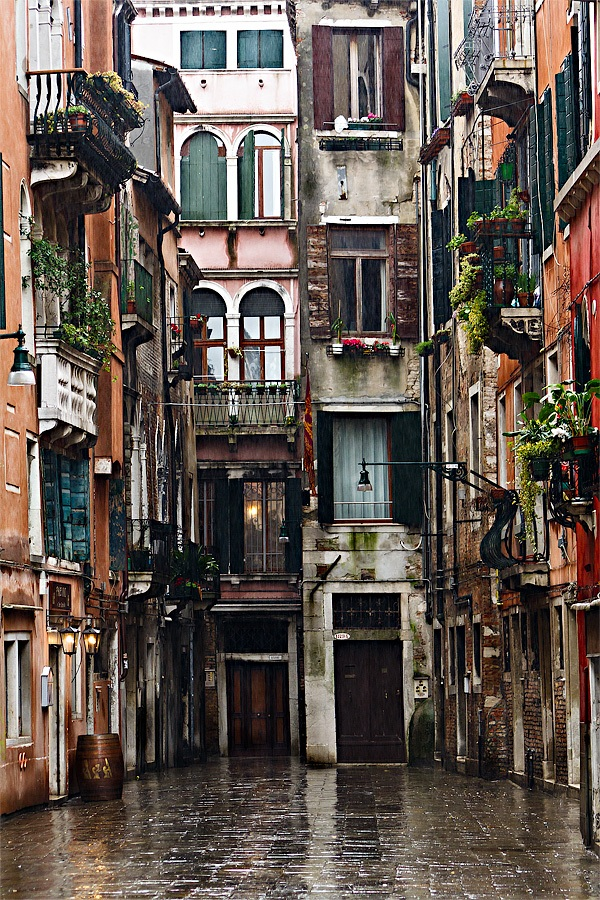 Venezia - Calle dei Botteri...