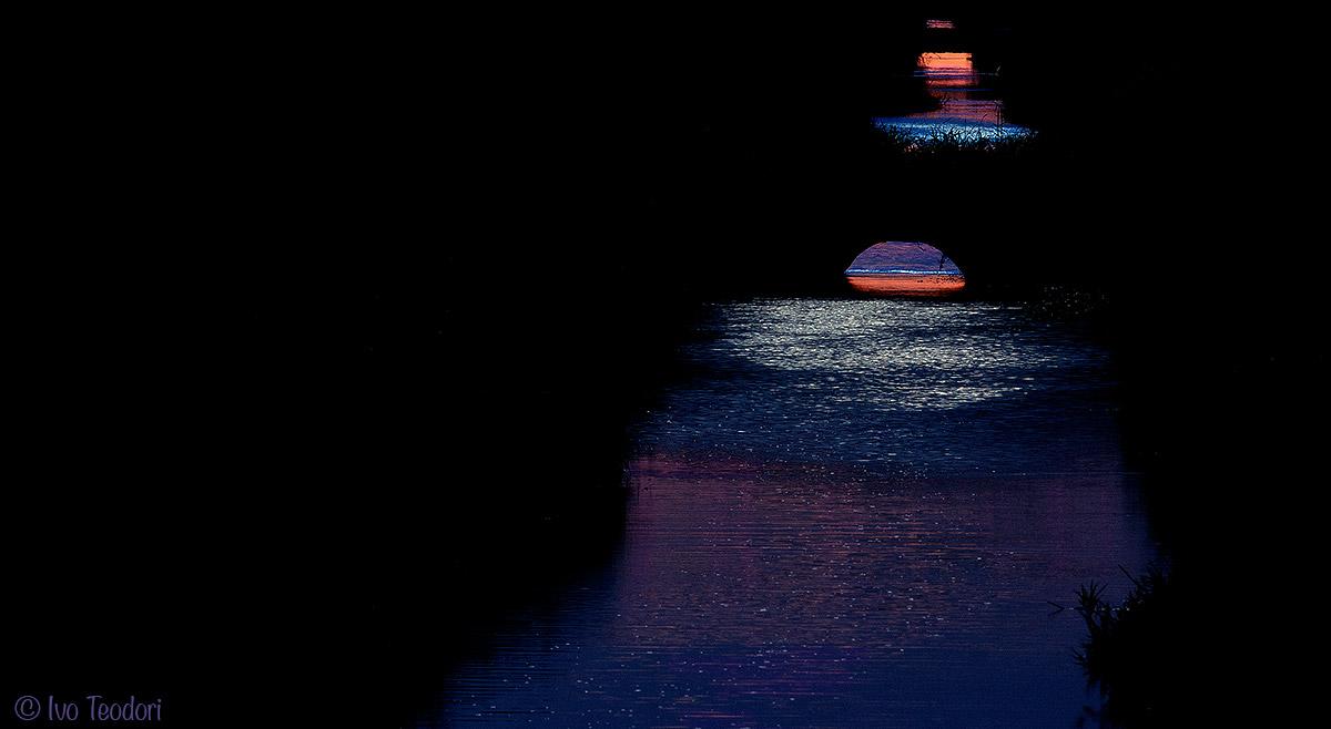 Blue dream....