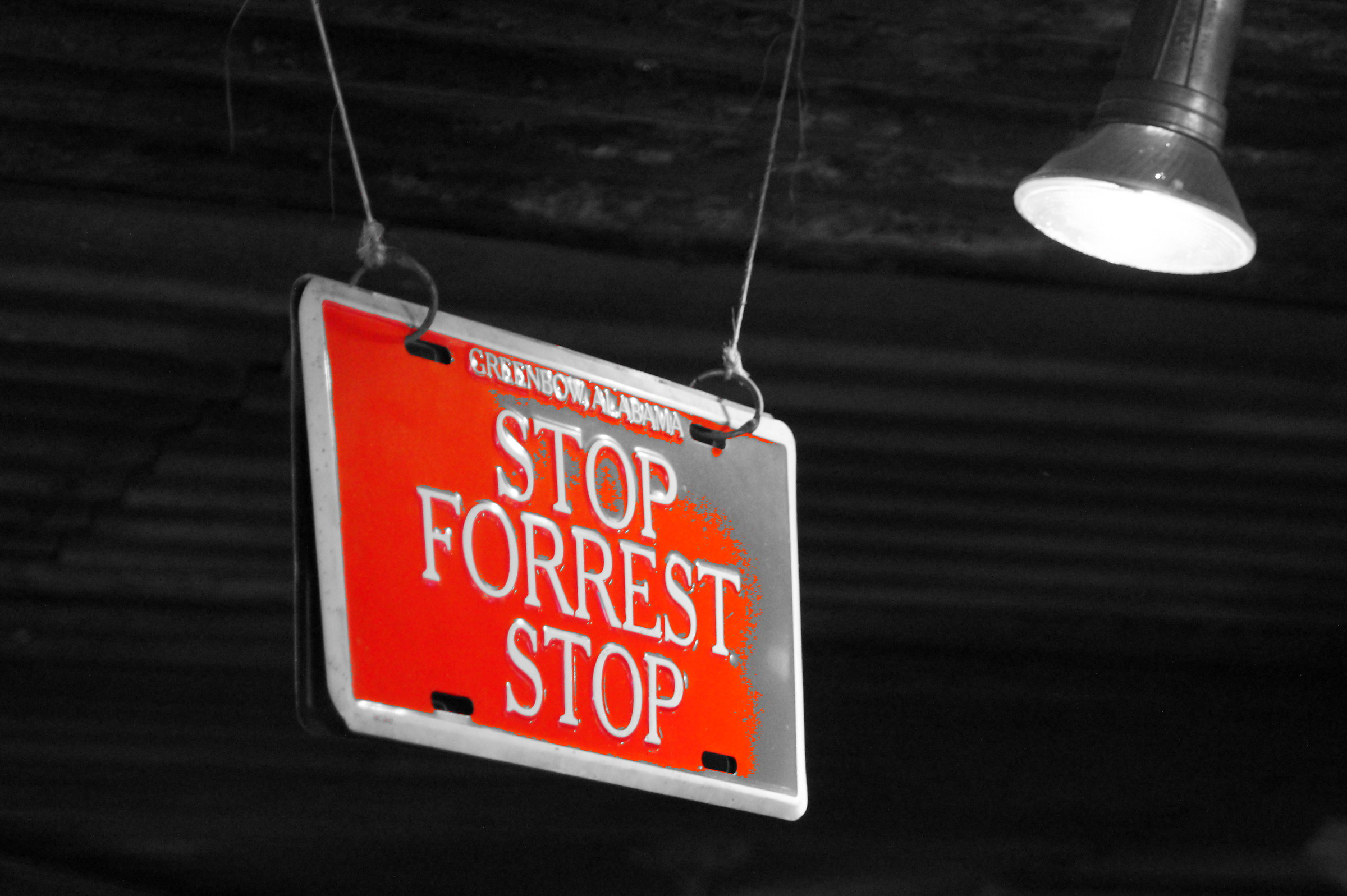 Stop Forrest Stop...