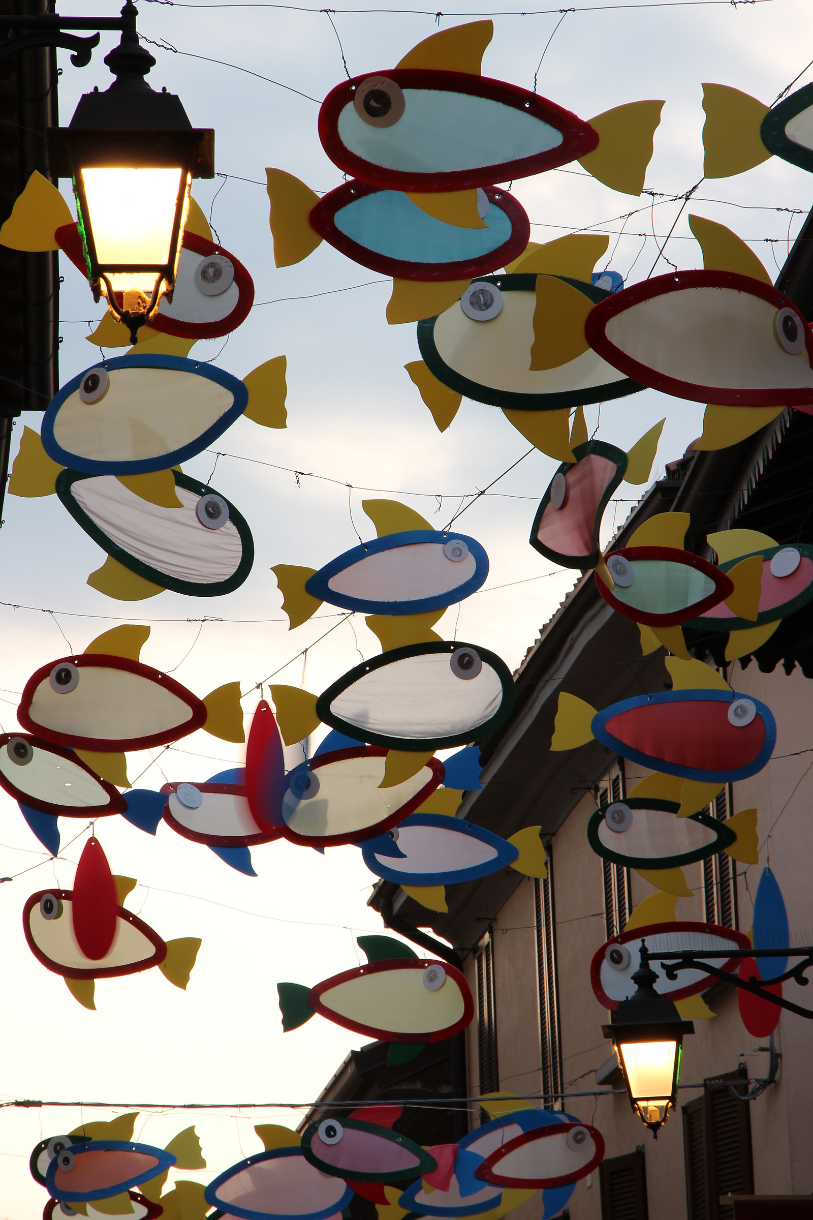 the fishes into the sky...