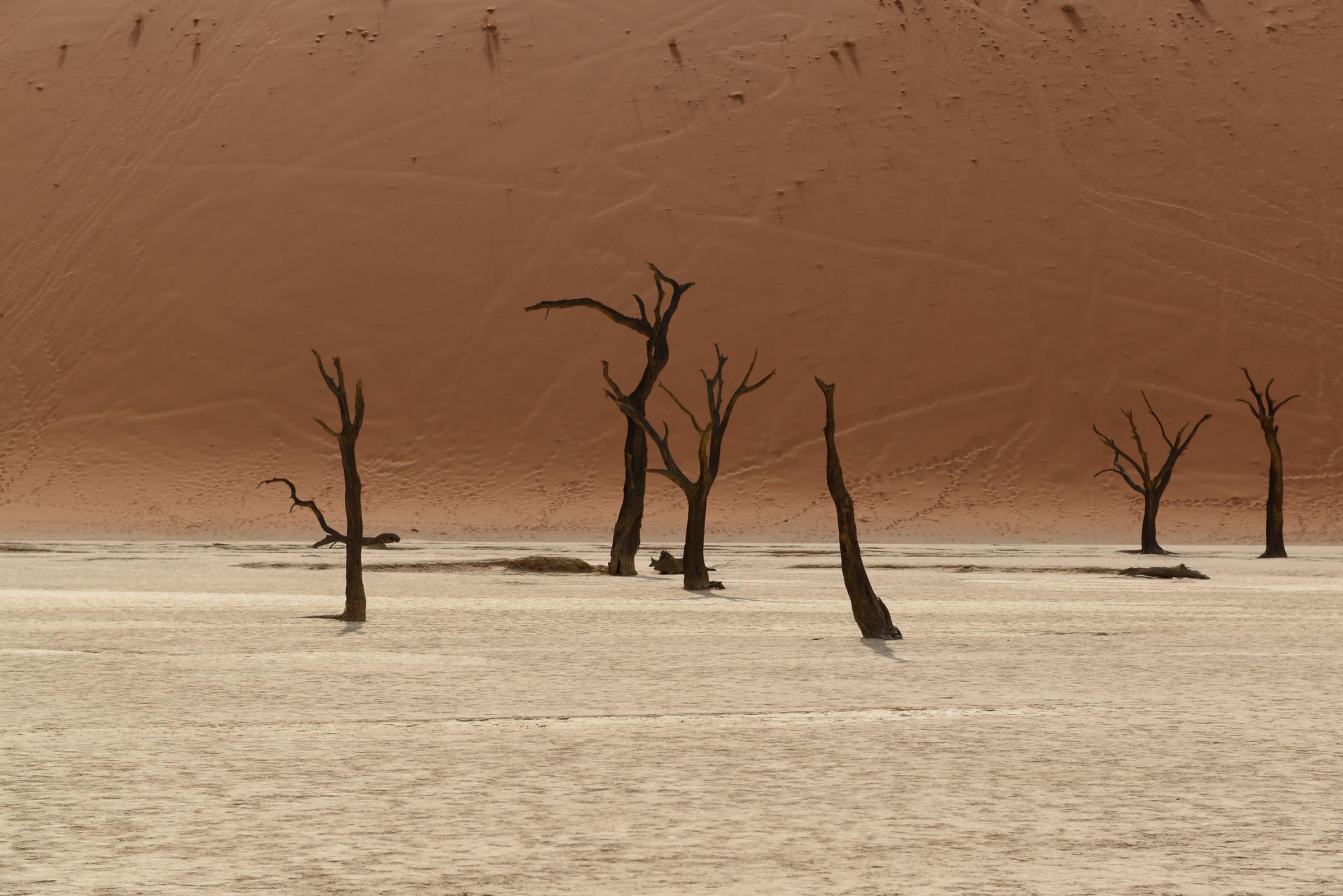 Namibia: deadvlei...