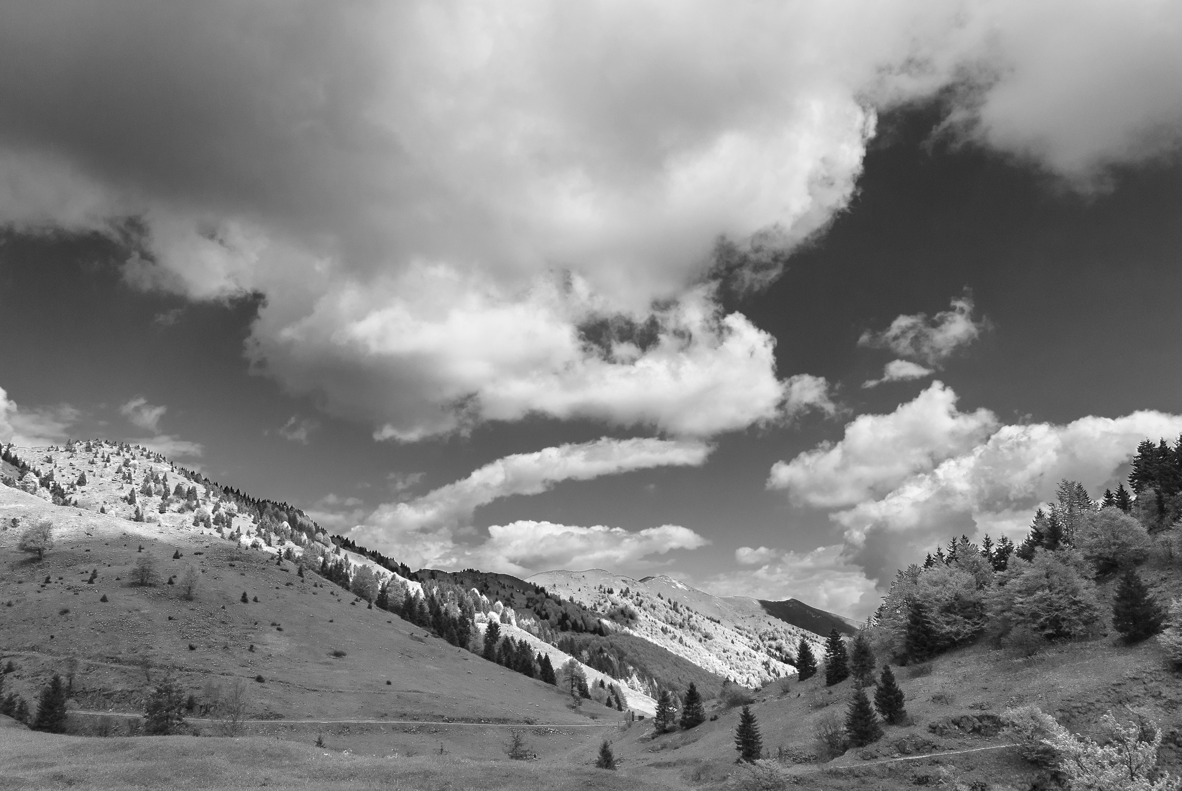 B / N Towards the Monte Grappa...