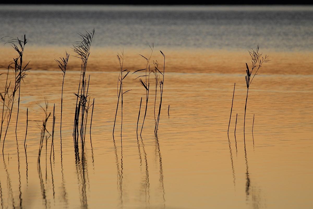 Lake Annone...