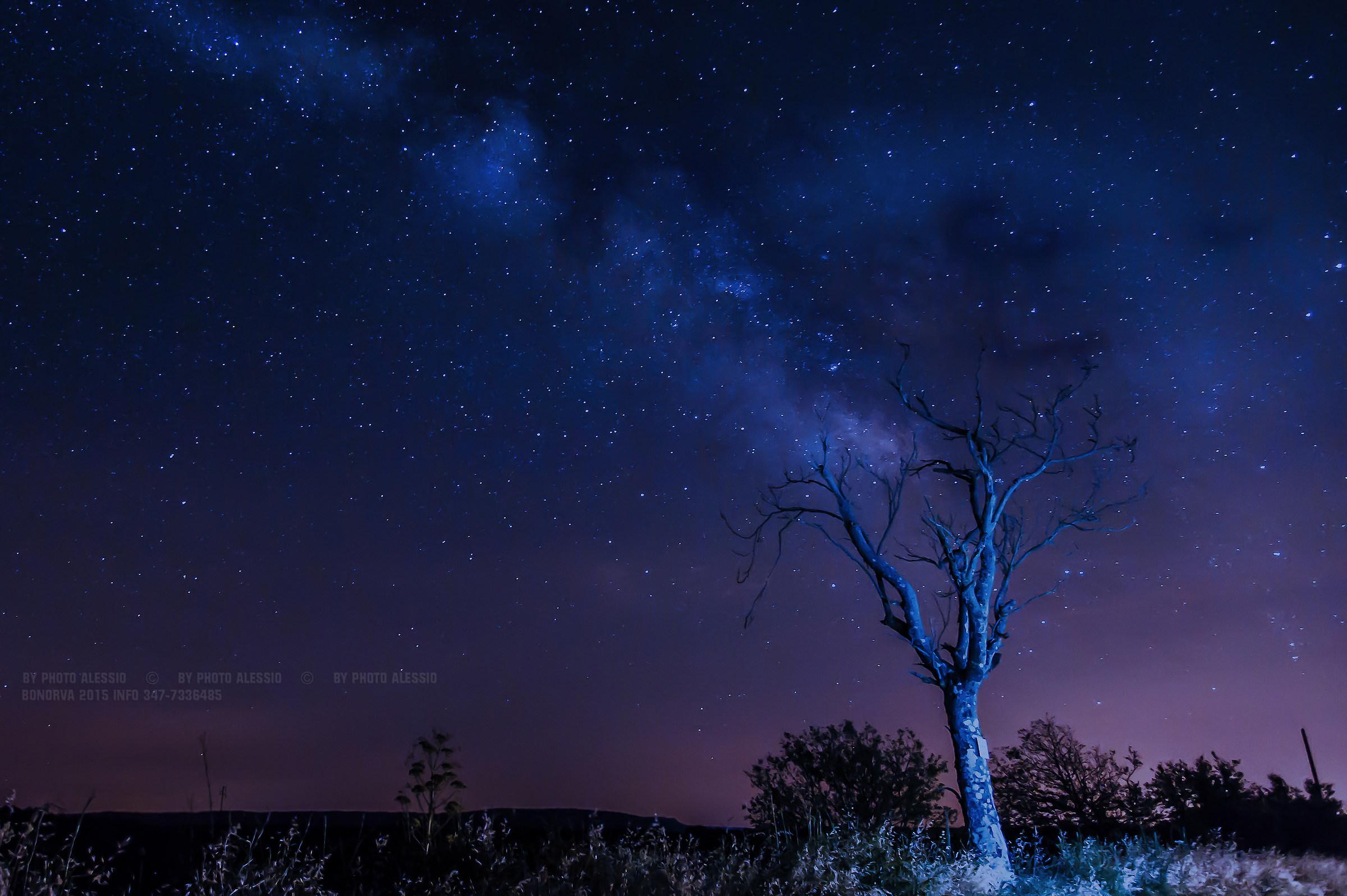 Night blue...
