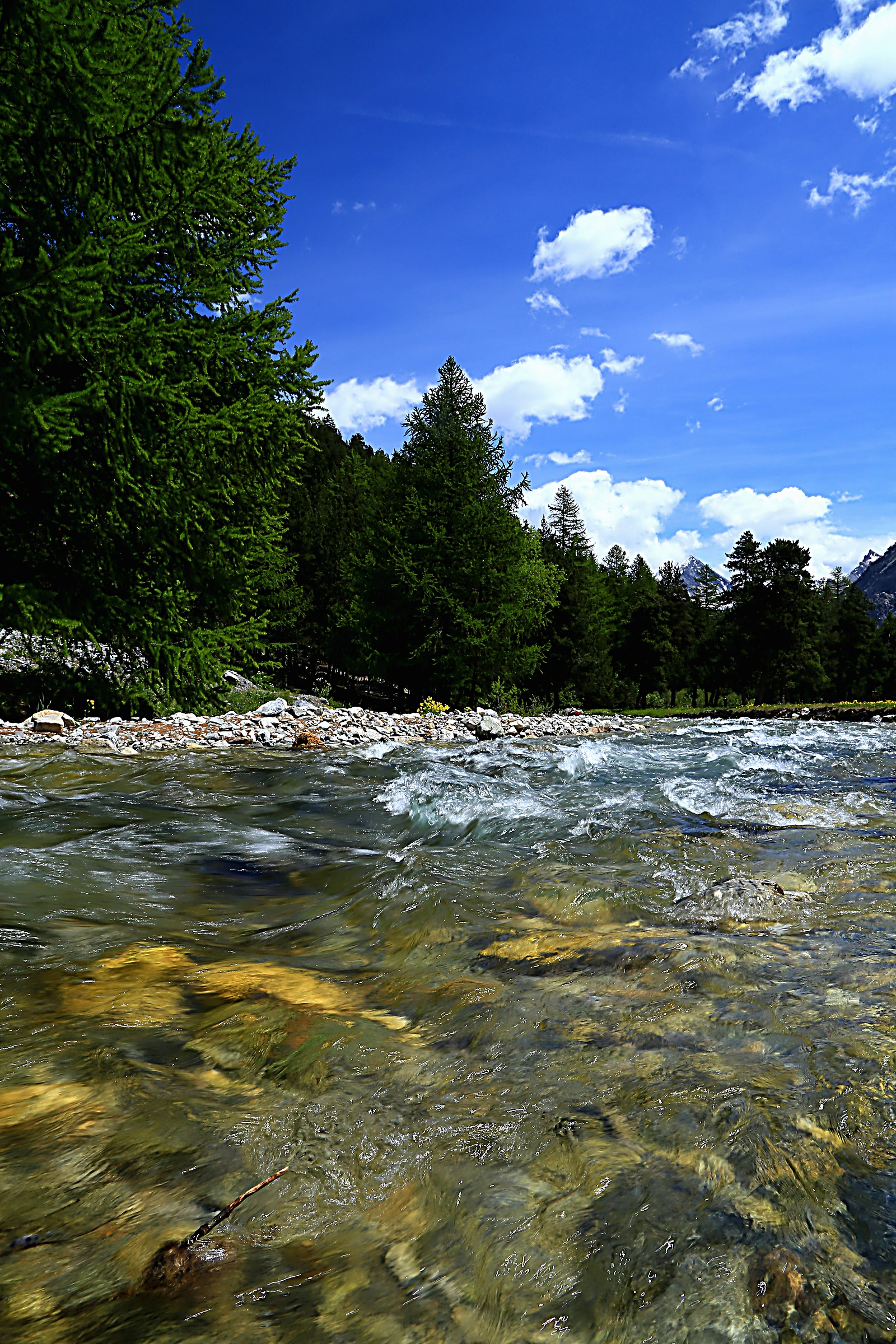 In Valle Stretta n. 2...