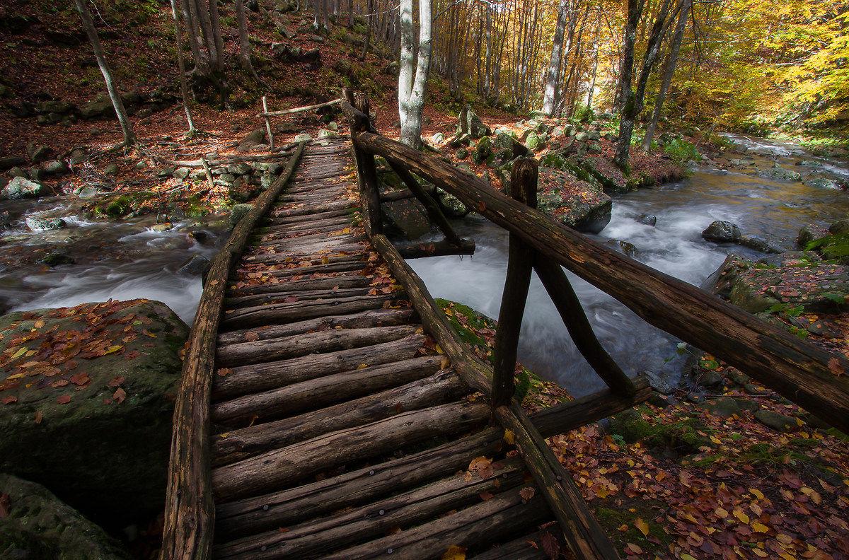 The bridge autumn...