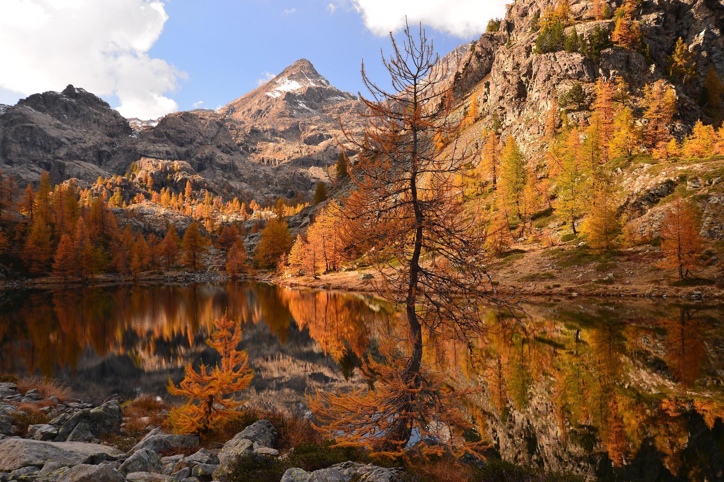 I colori dell' autunno...