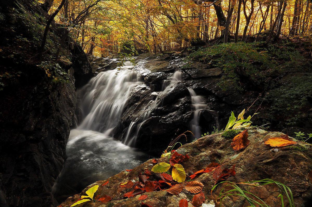 Waterfall verlonga...