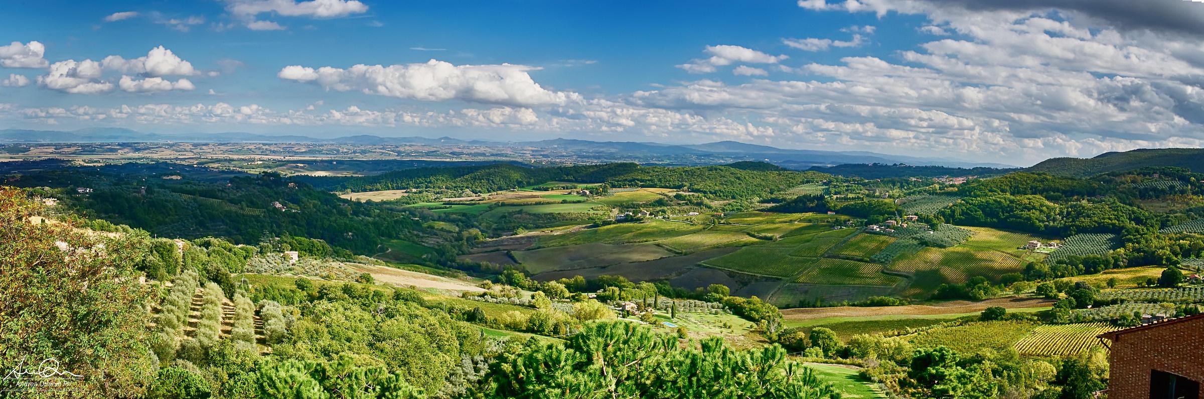 La Valle del Vino...