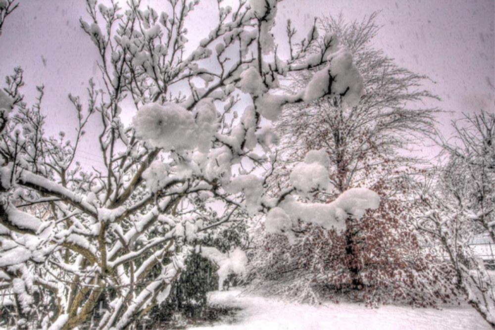 Neve il 10 Febbraio 2014...