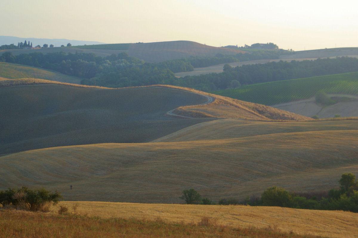 Around Cinigiano, Grosseto...