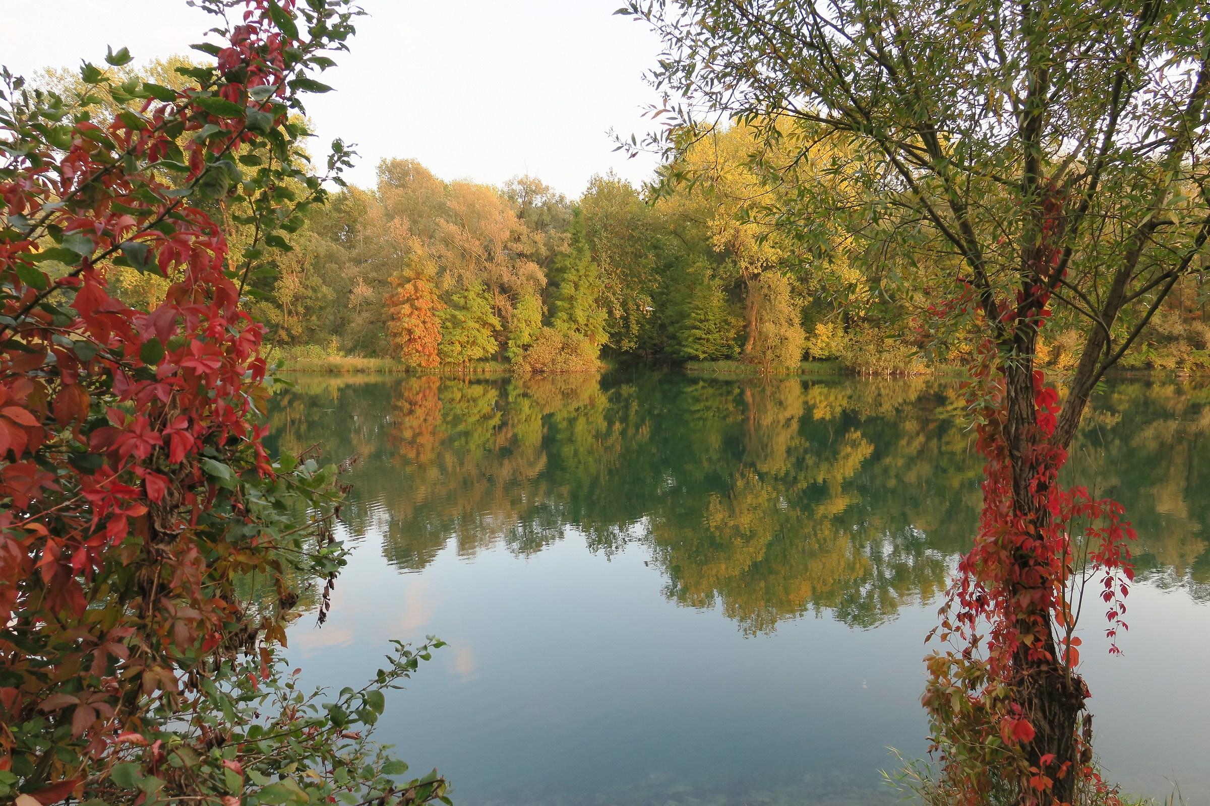 Adda, caldi colori d'autunno...