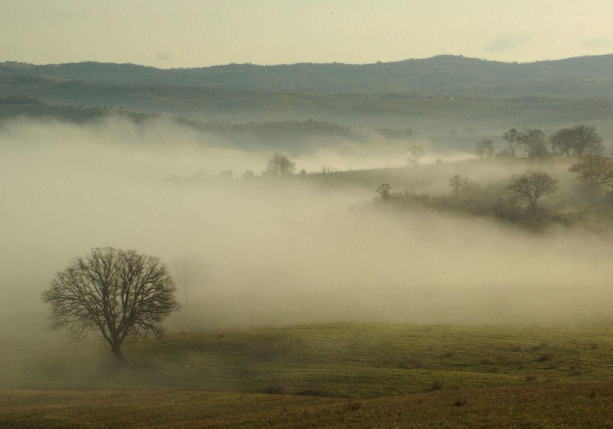 Fog from Cinigiano...