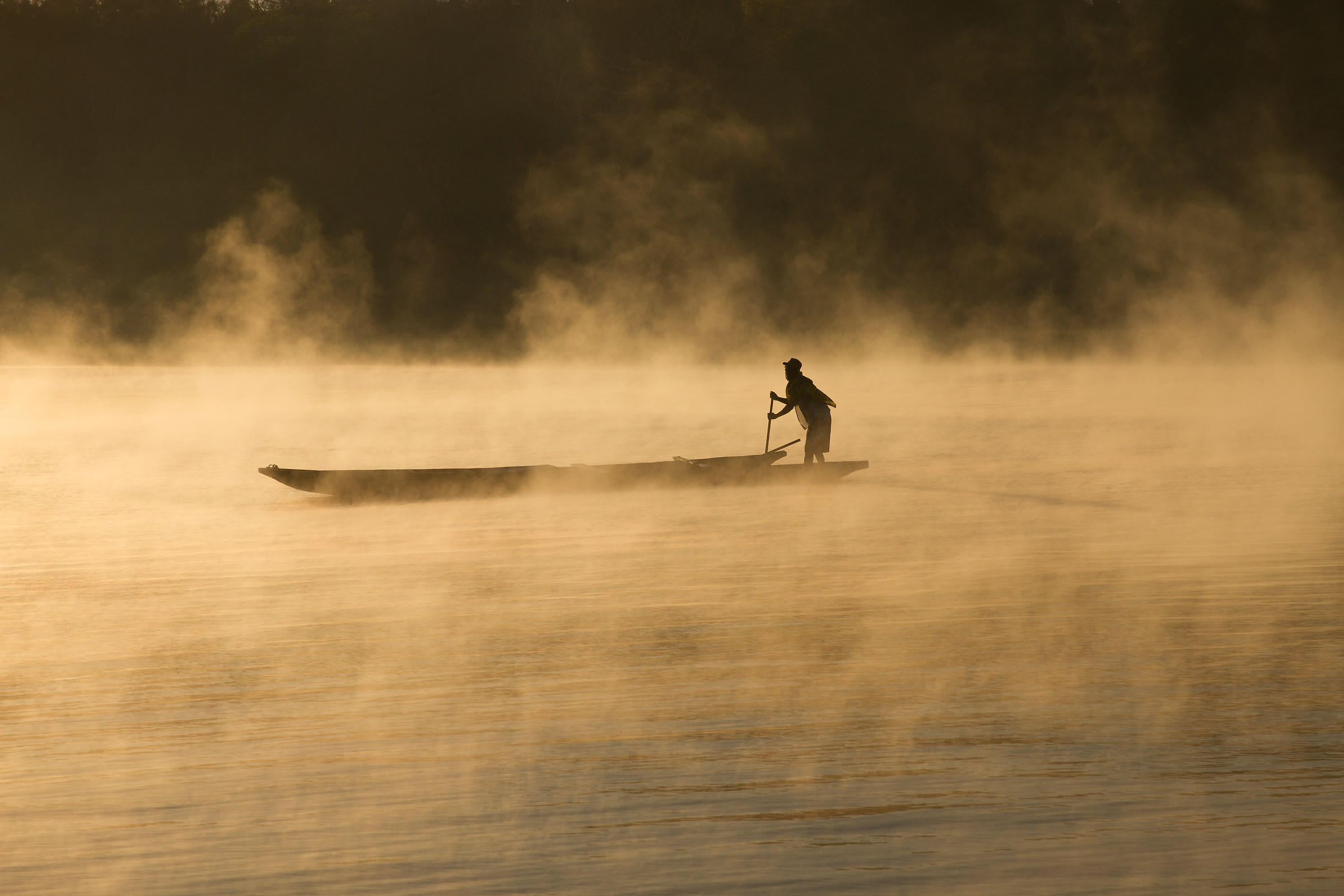 Rowing in the fog...