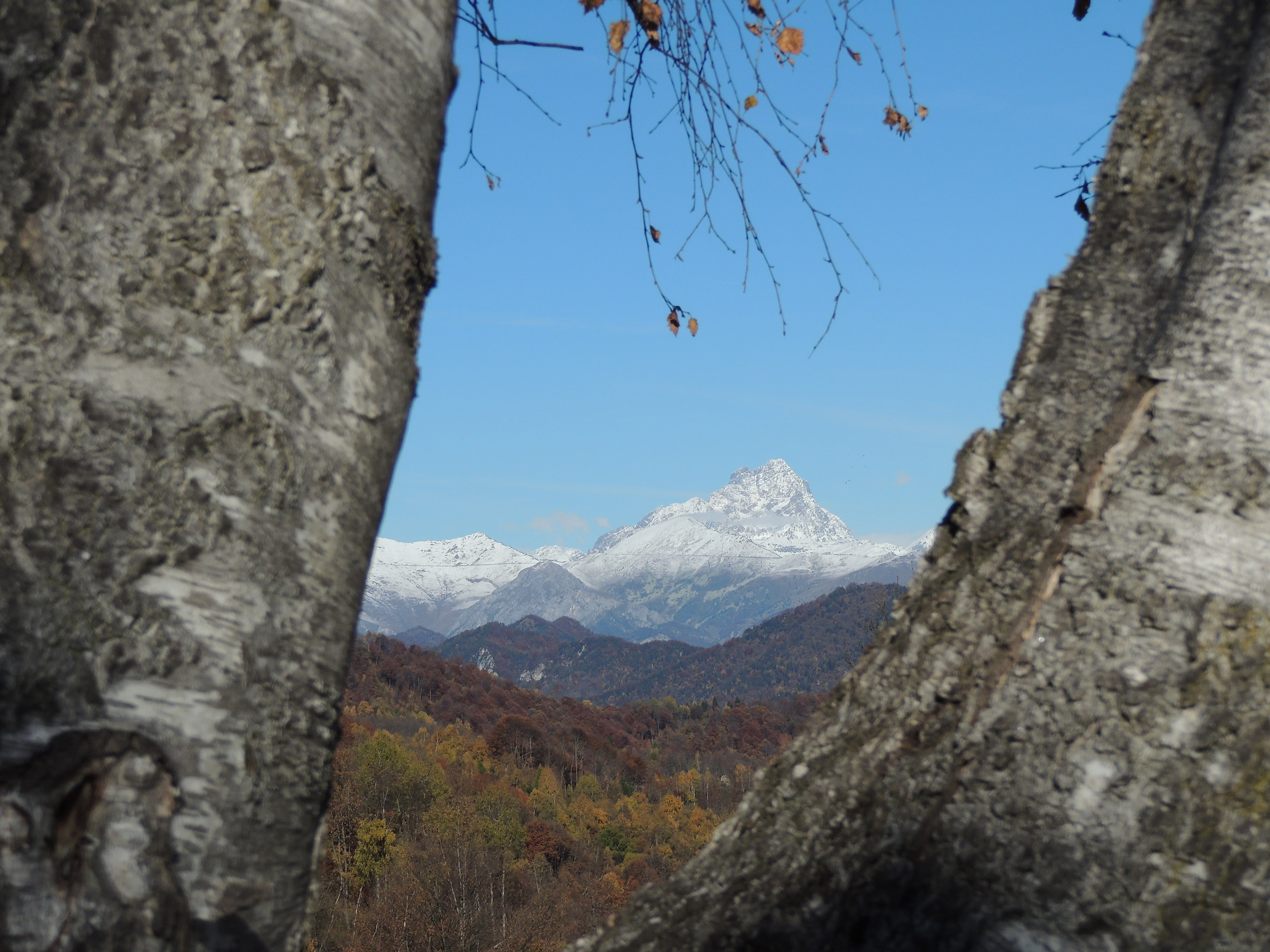 first snow on monviso...