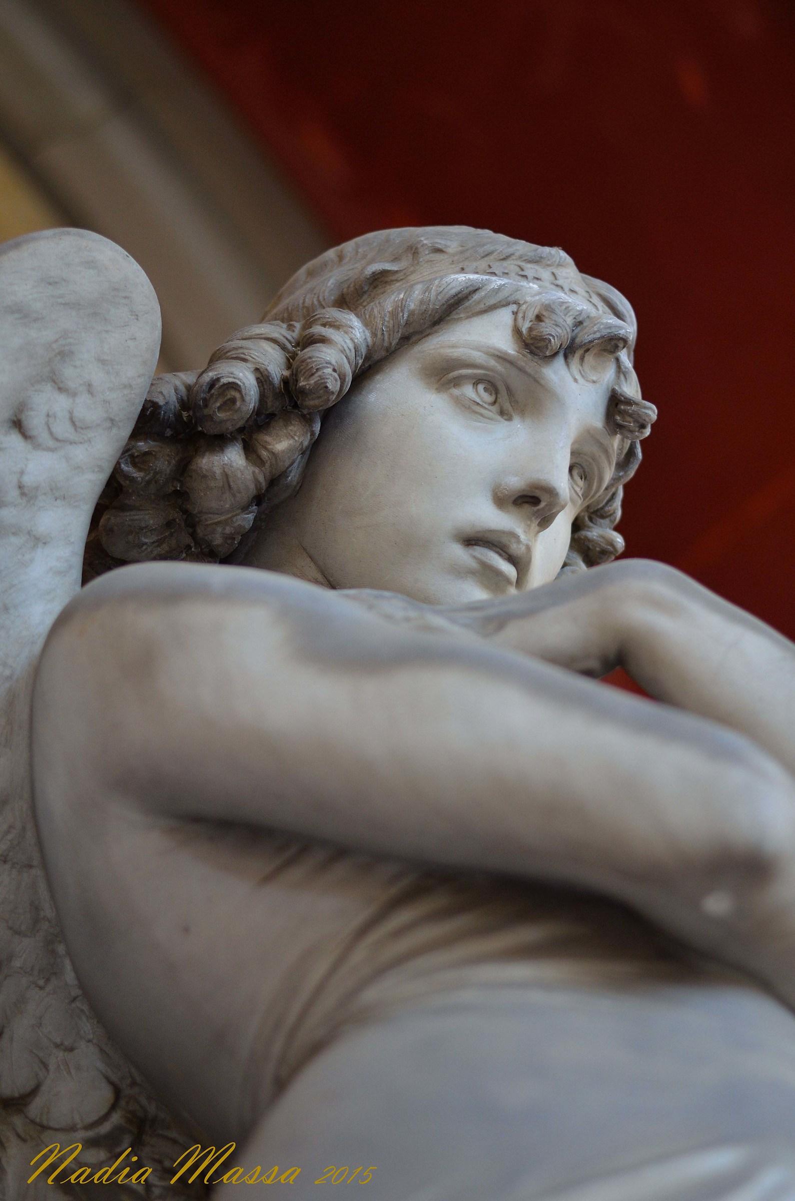 Monteverde Angel...