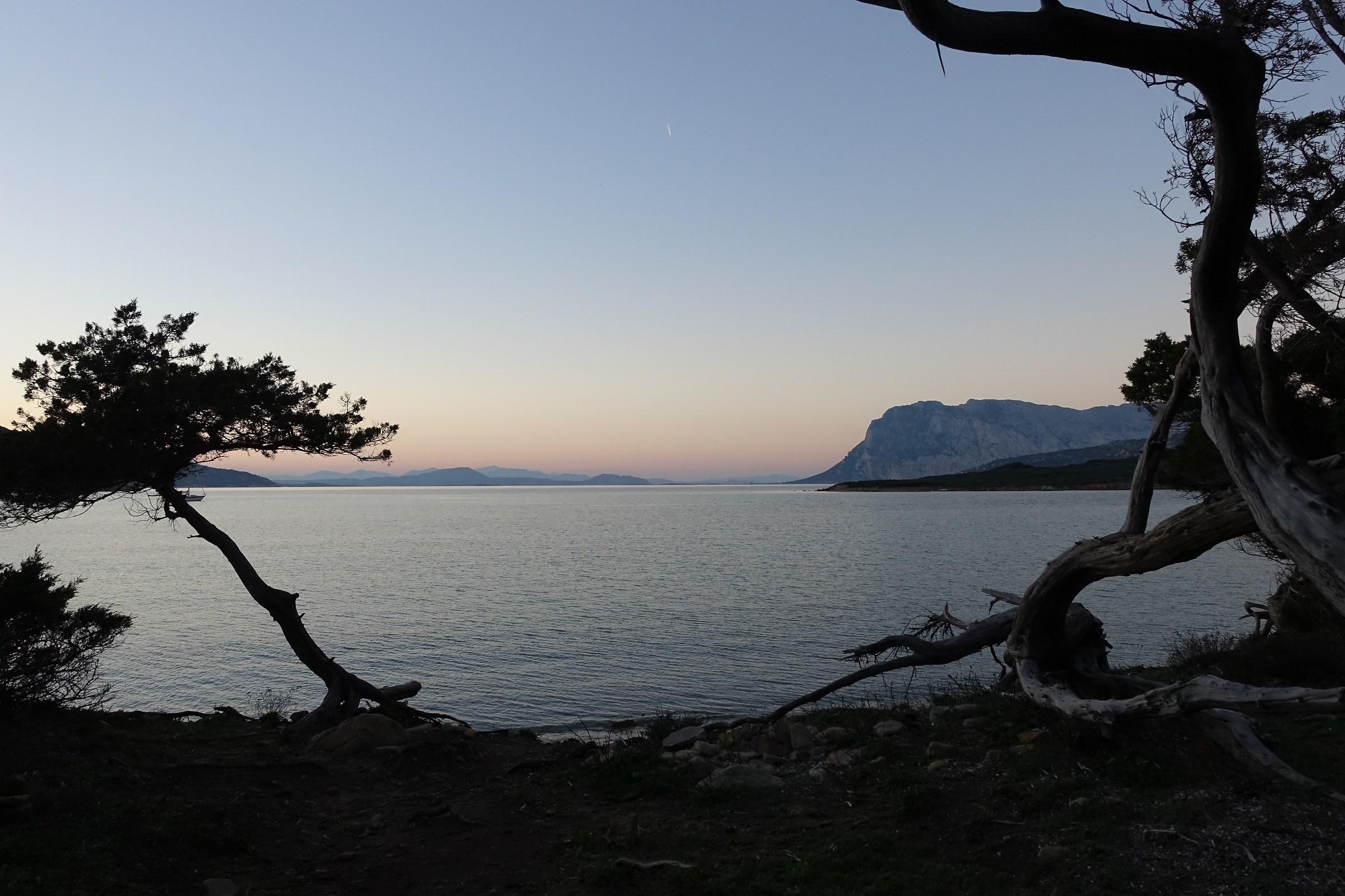 tramonto tra i ginepri di Coda Cavallo...