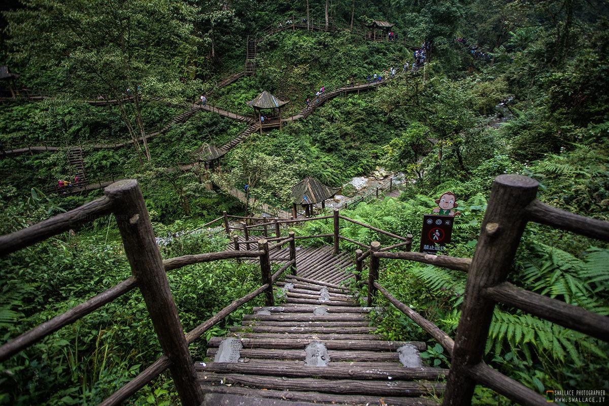 """Mount Emei """"Cina""""..."""