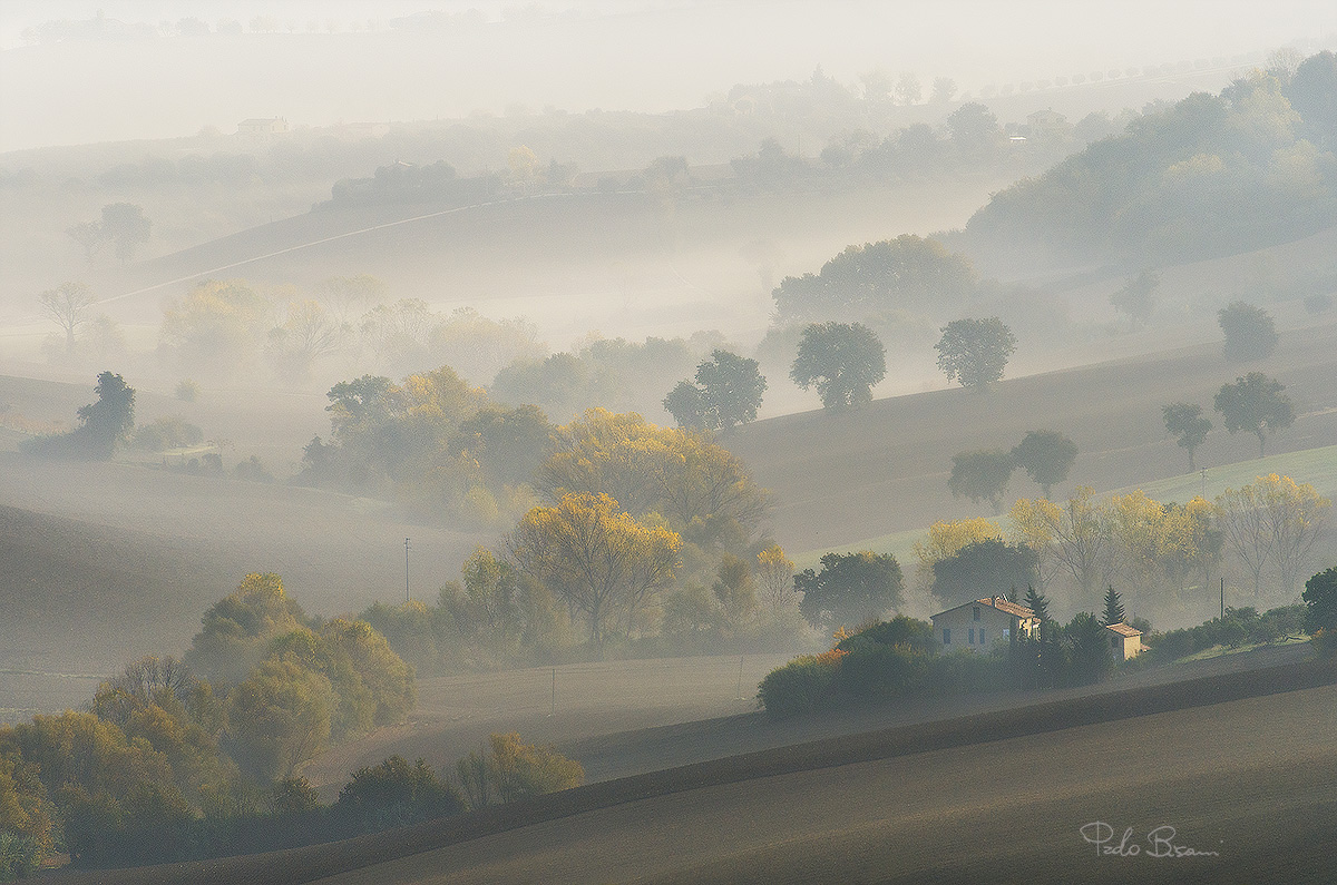 In the morning mist...