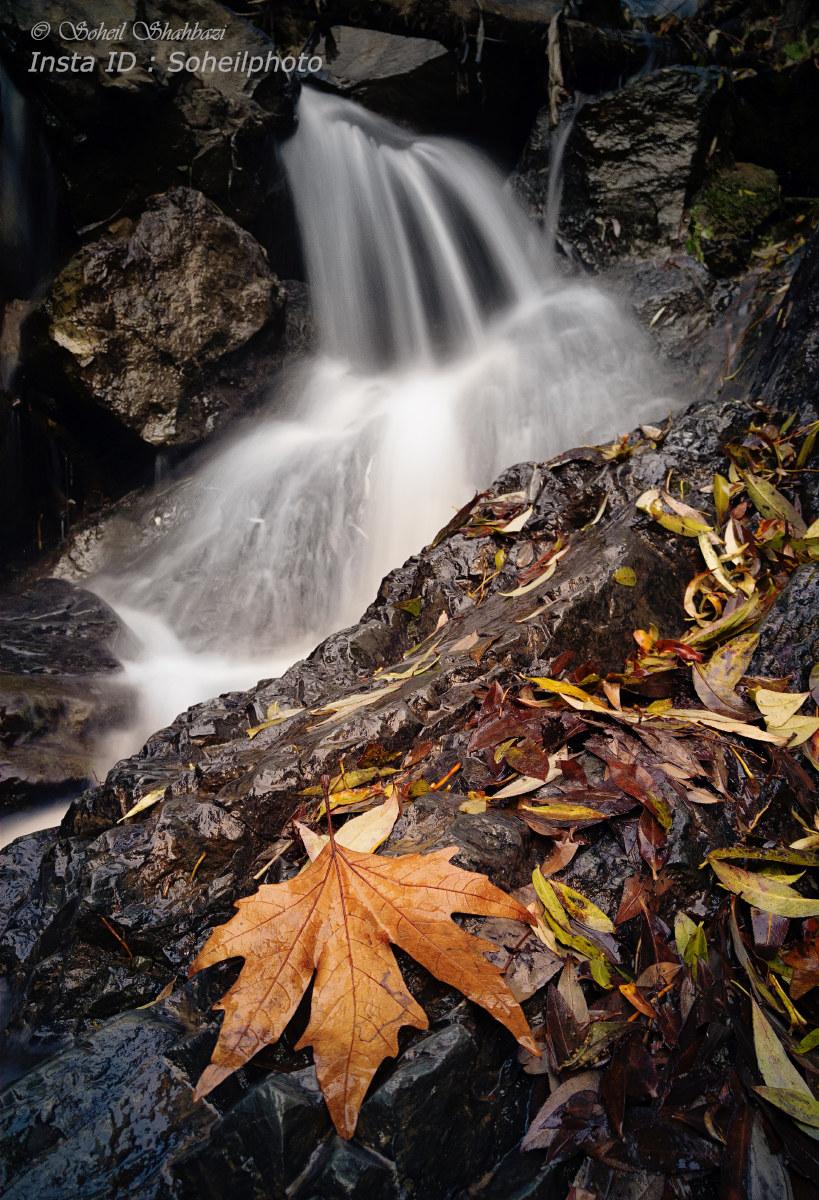Autumn 3...