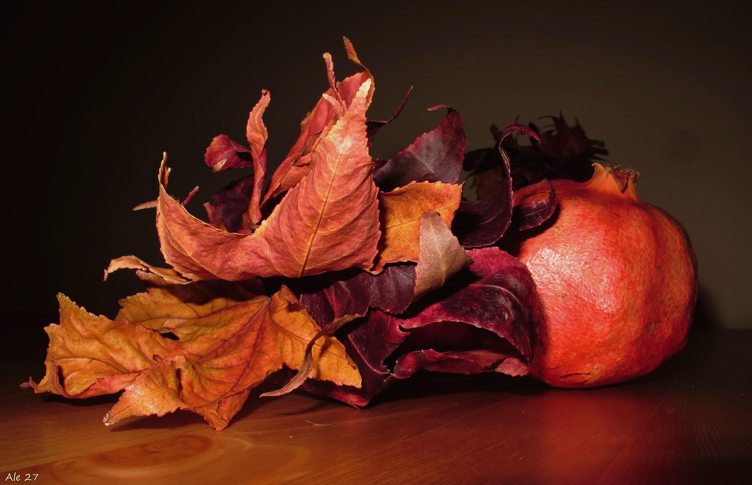 .... Good luck autumn ......