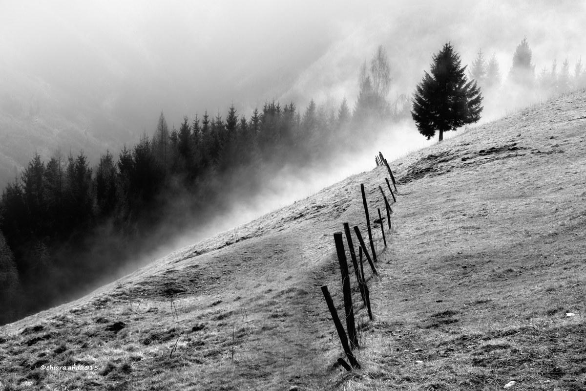 Sale la nebbia ........