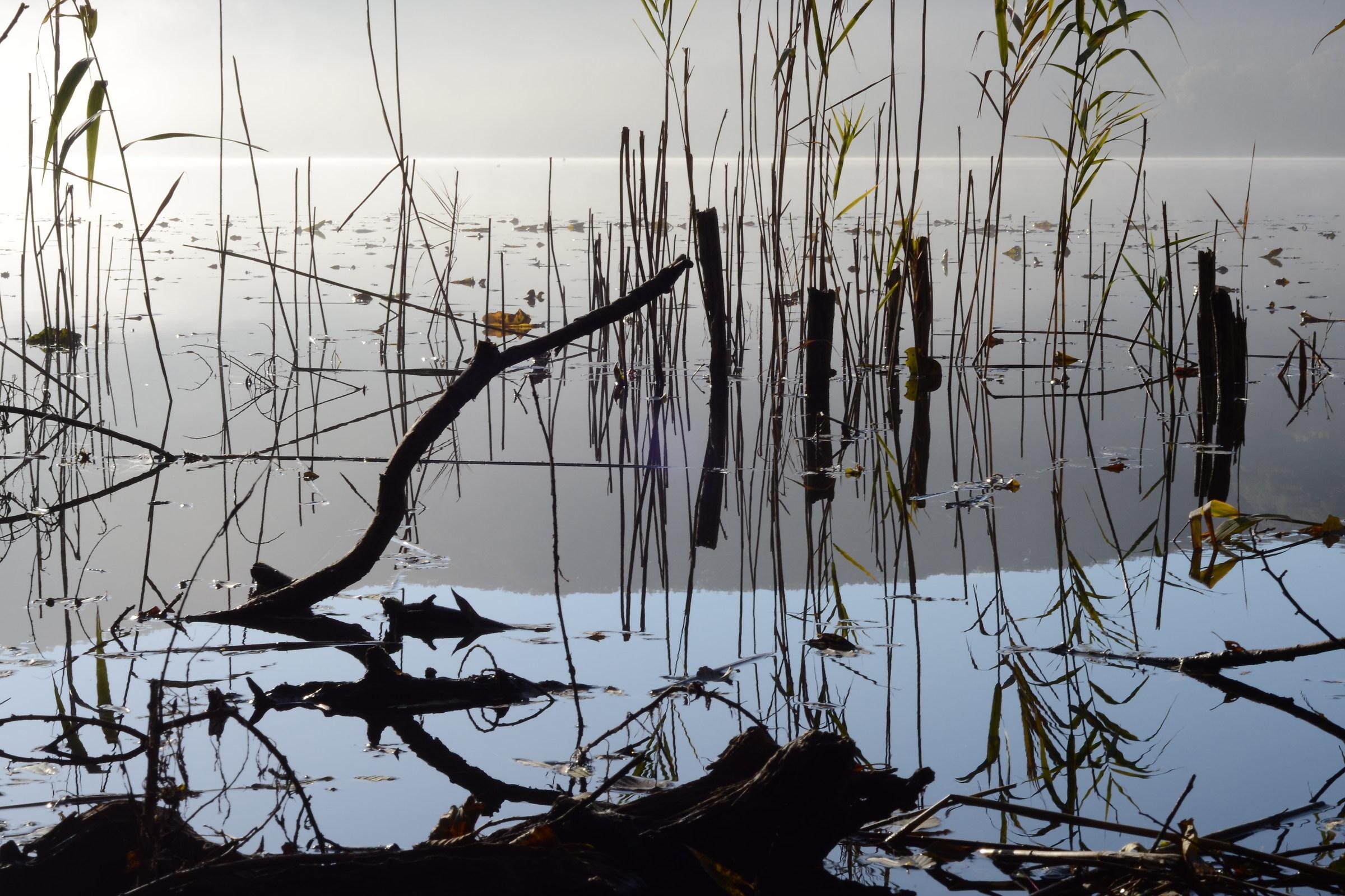 laghi di monticchio...